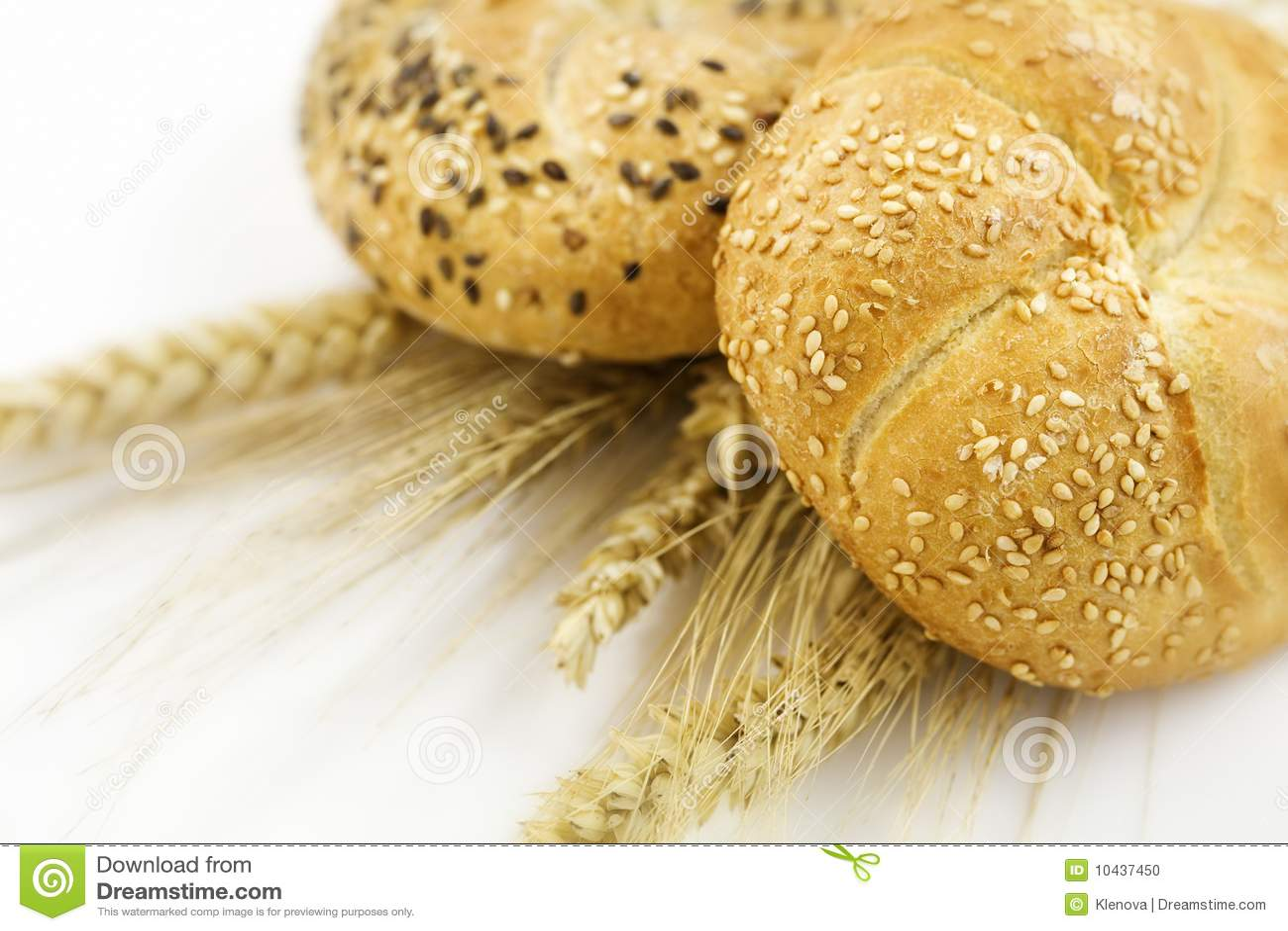 Frumento e pane