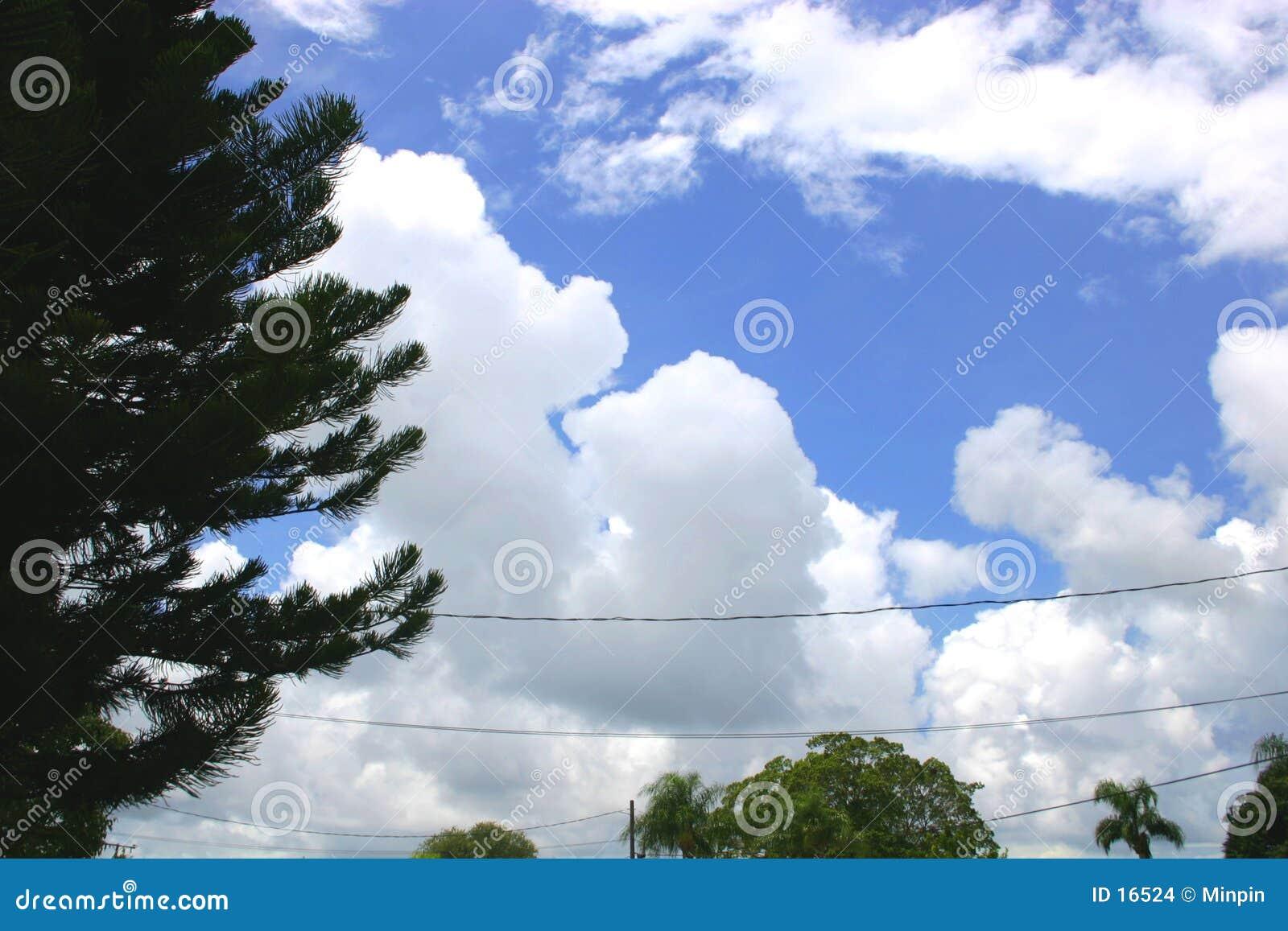 Frunce de las nubes de tormenta