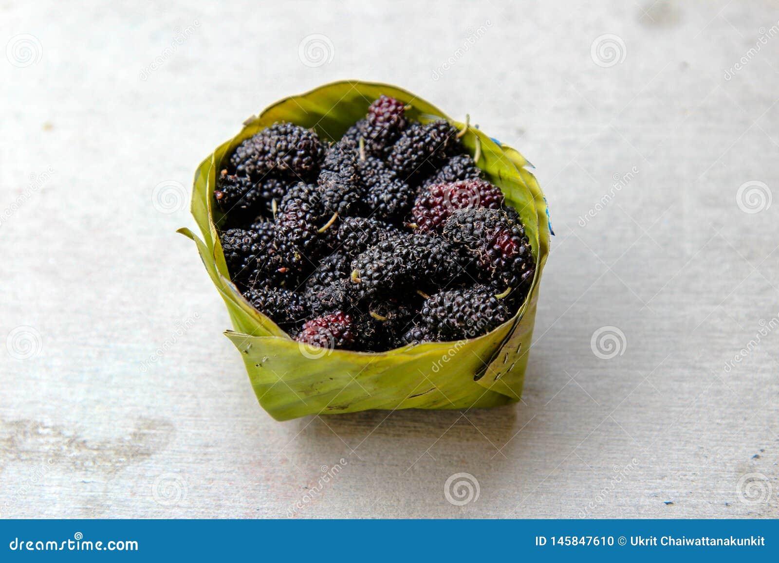 Fruta de la mora en verano Mora fresca mora org?nica en cuenco de la hoja del pl?tano