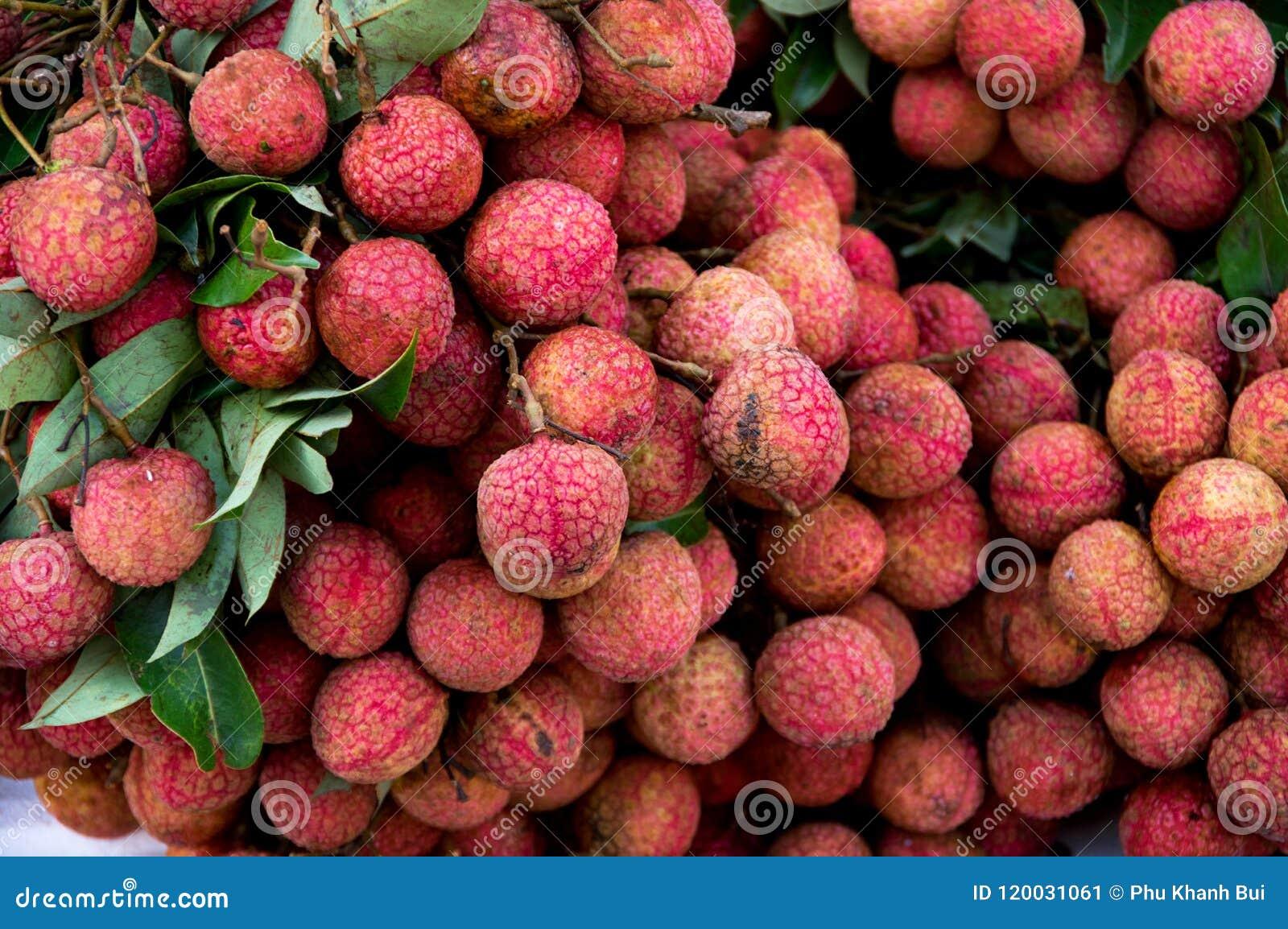 Fruta del lichí para el comercio, venta, diseño