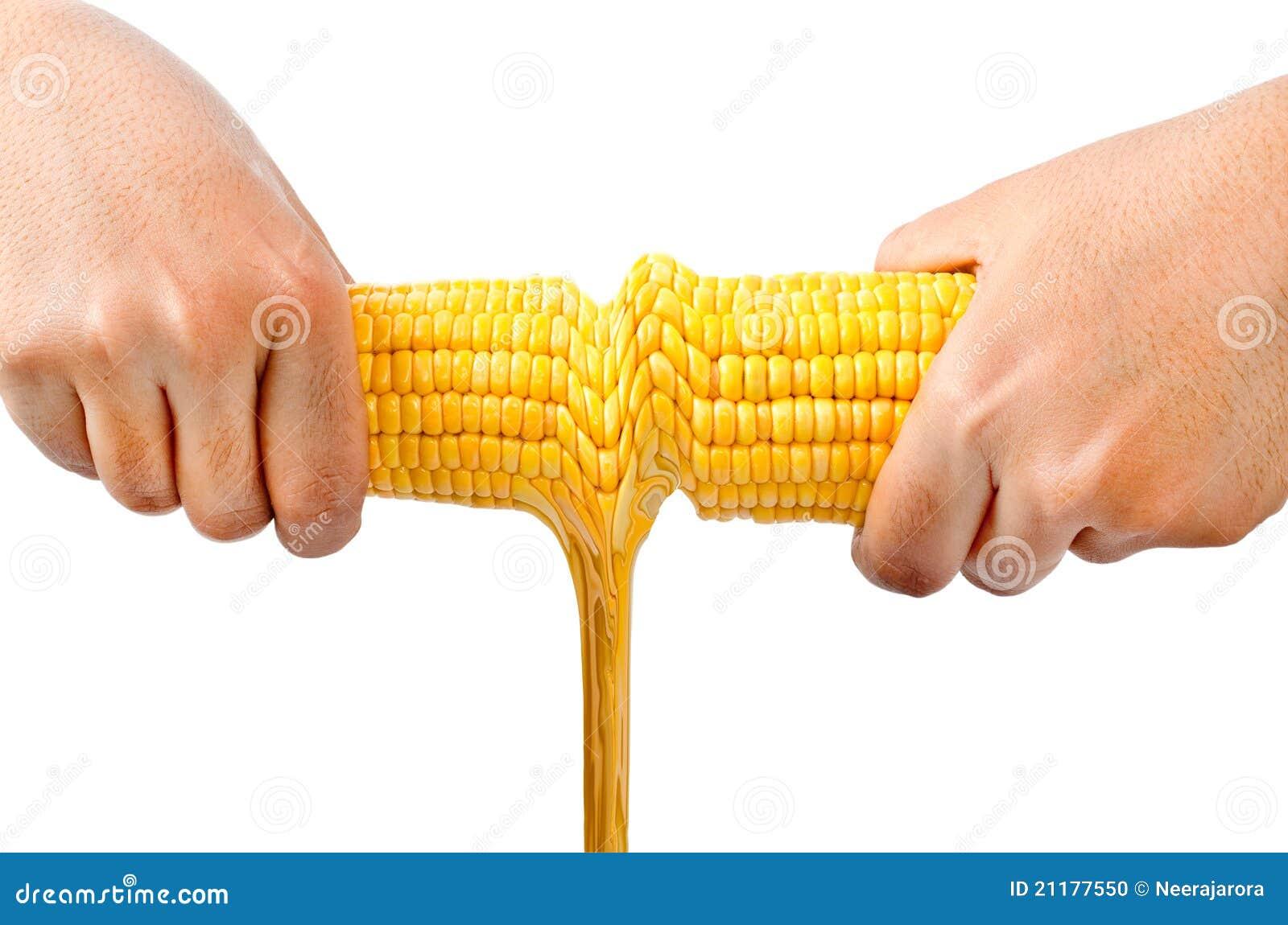 Fruta del maíz y petróleo fresco