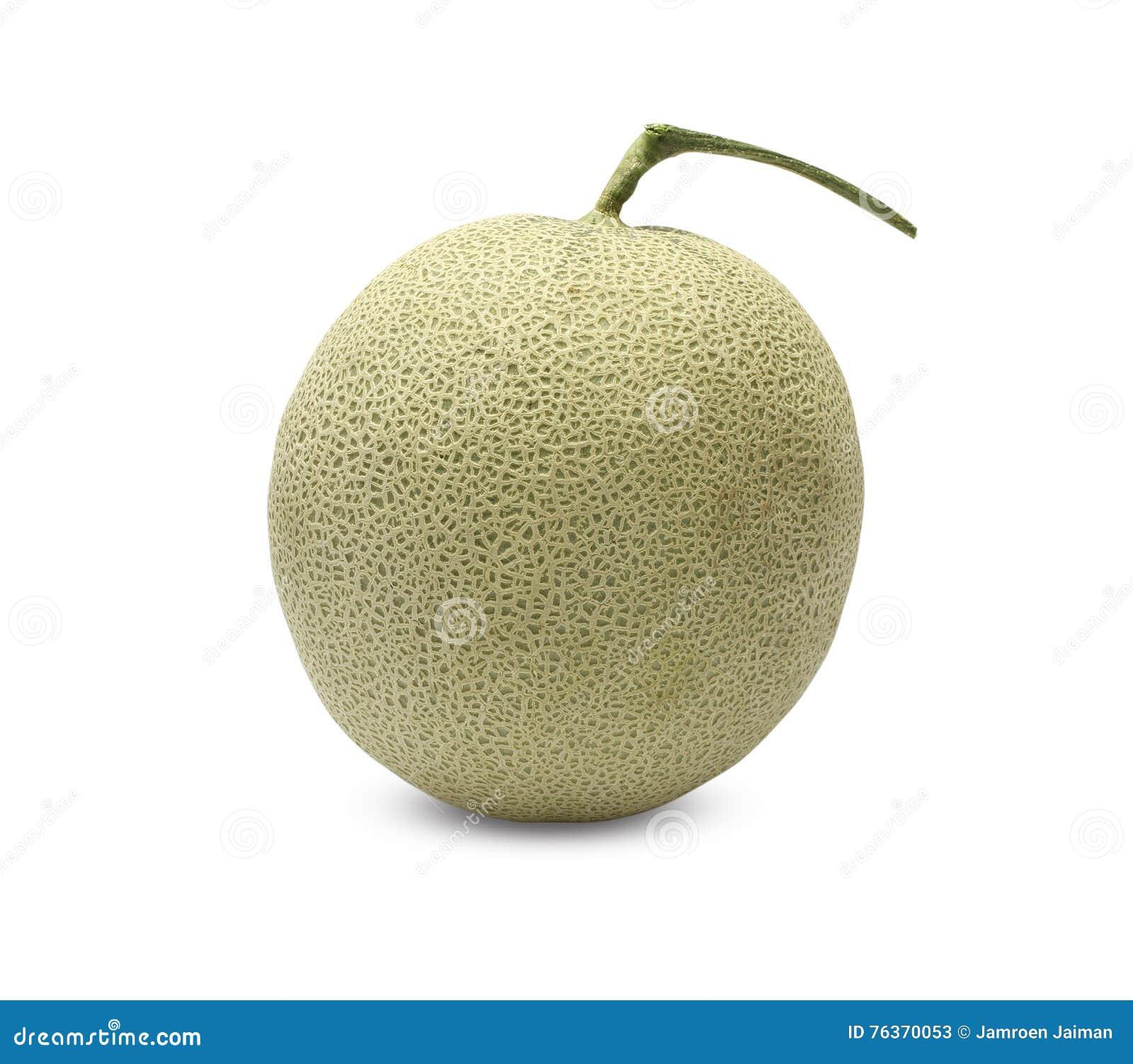 Fruta del melón de la roca en el fondo blanco
