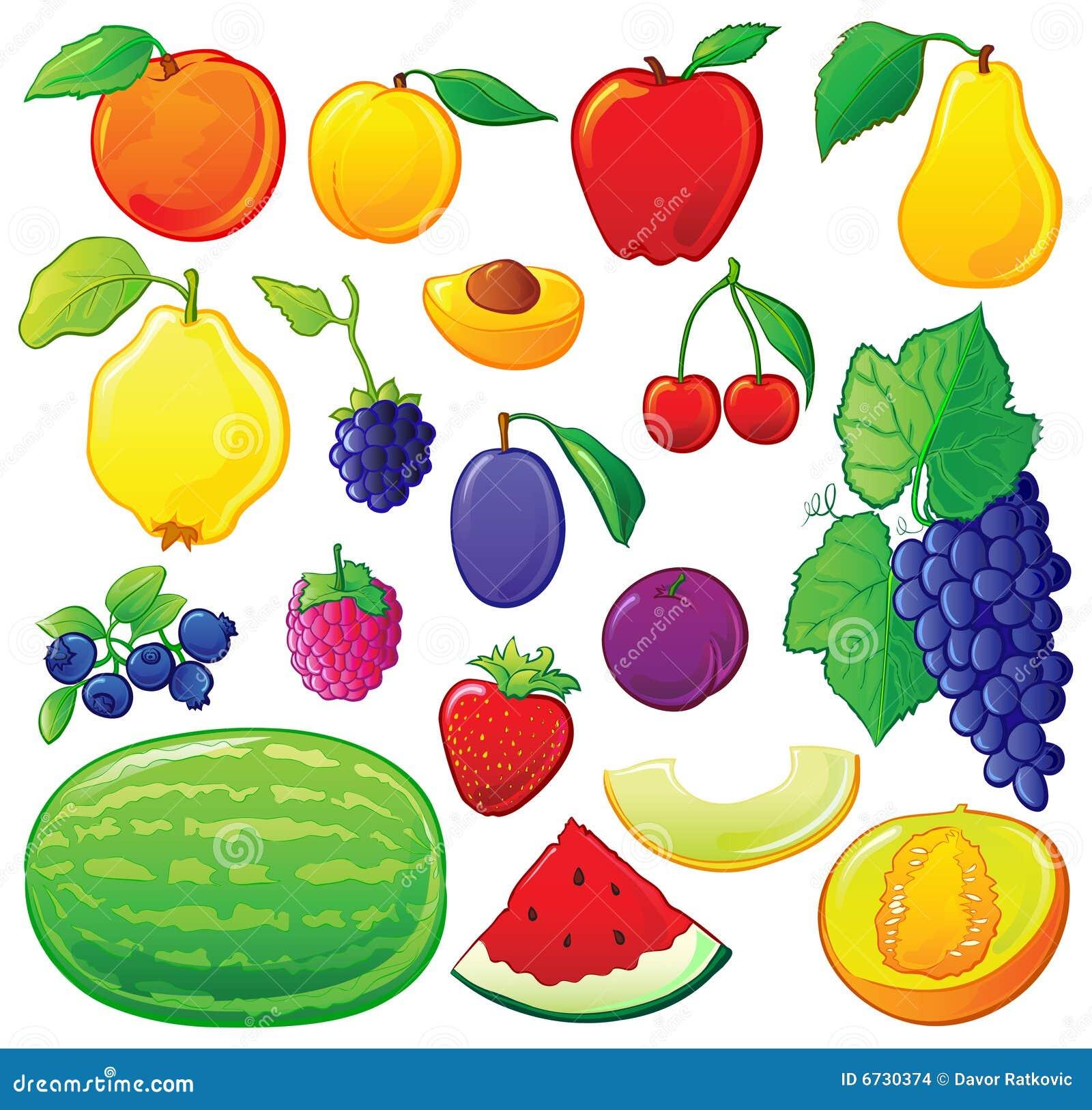 Fruta fijada con los esquemas del color ilustraci n del for Clipart frutta