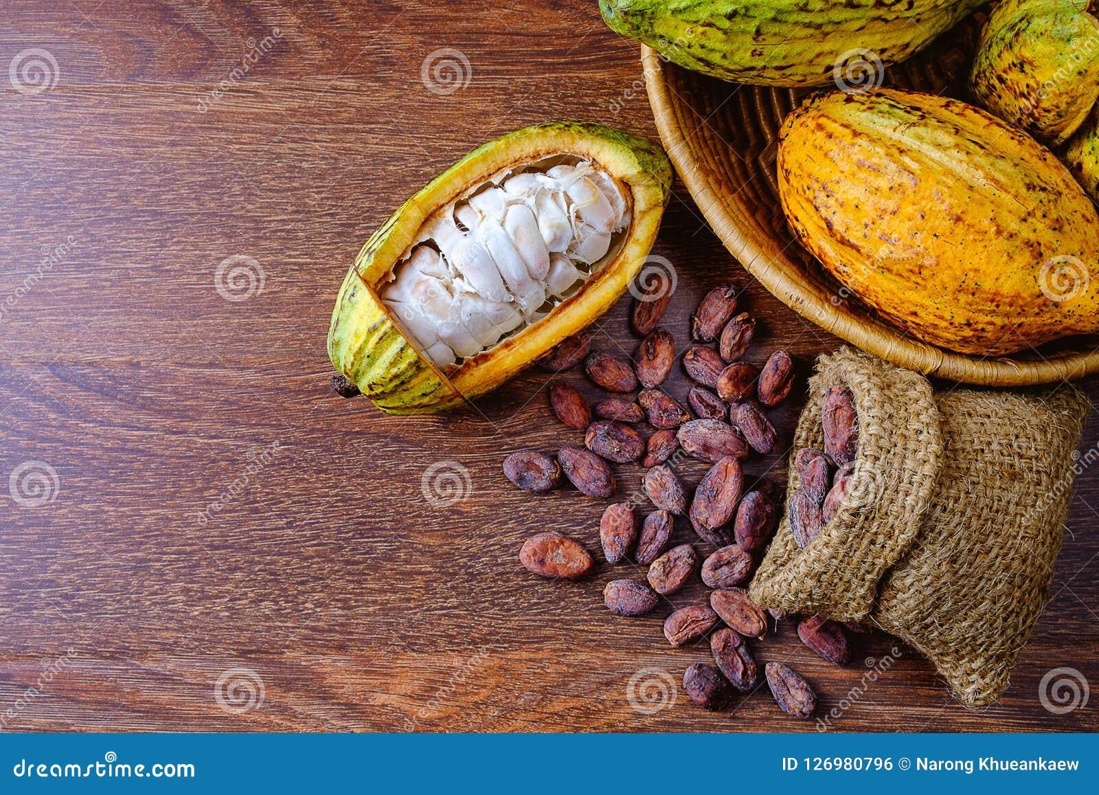 Fruta fresca del cacao con las vainas del cacao con los granos de cacao