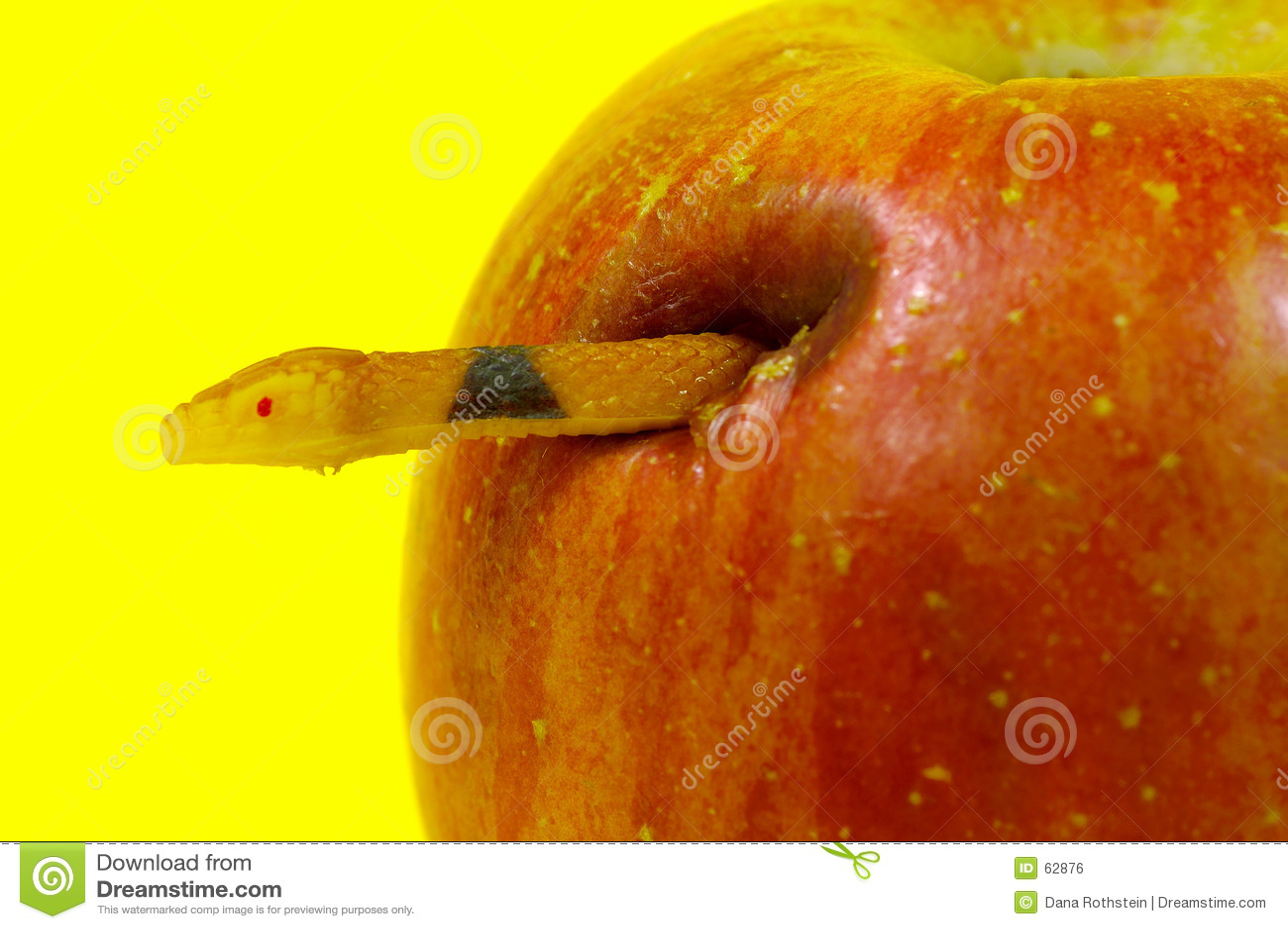 Fruta proibida