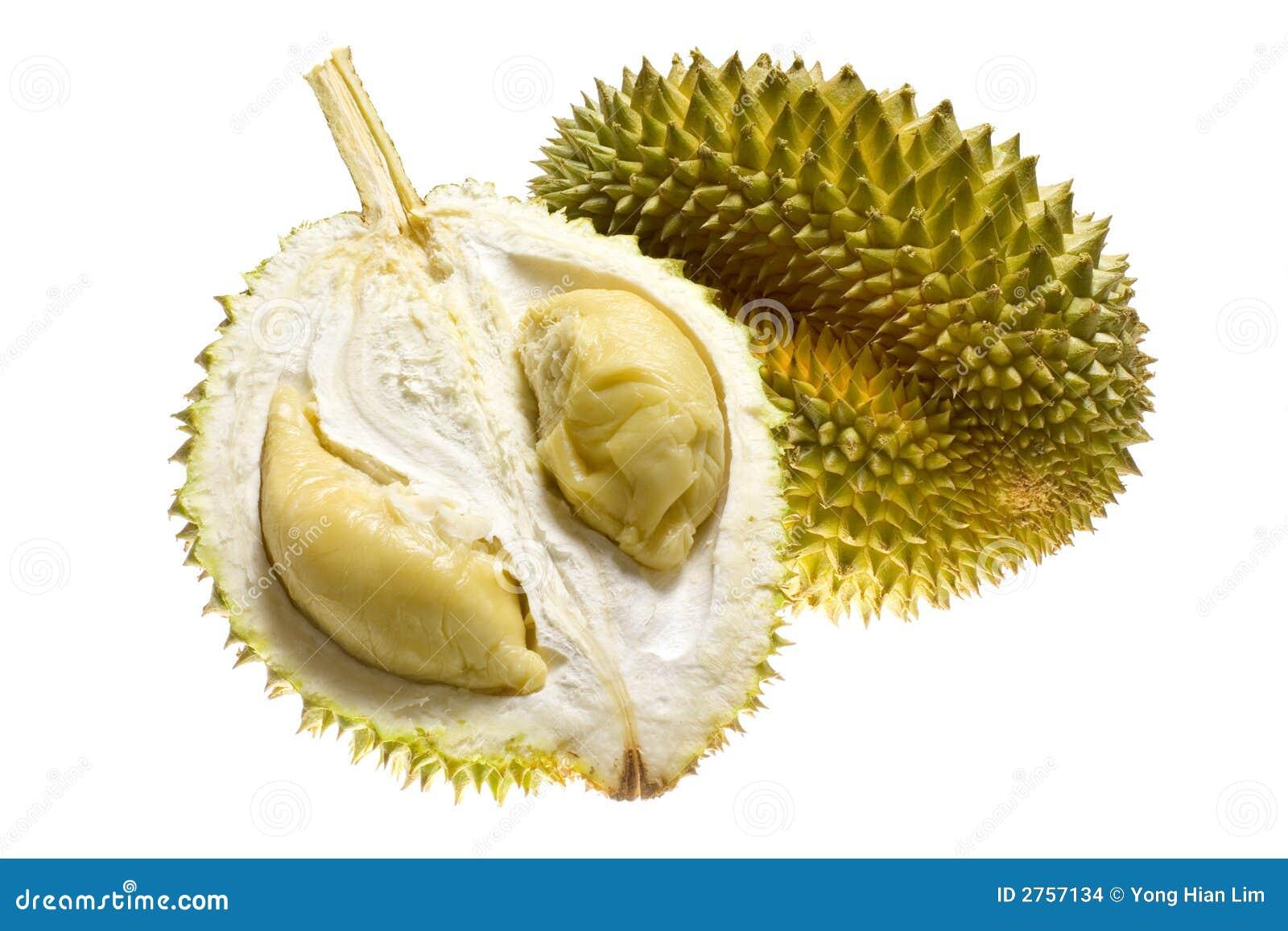 Fruta tropical - Durian