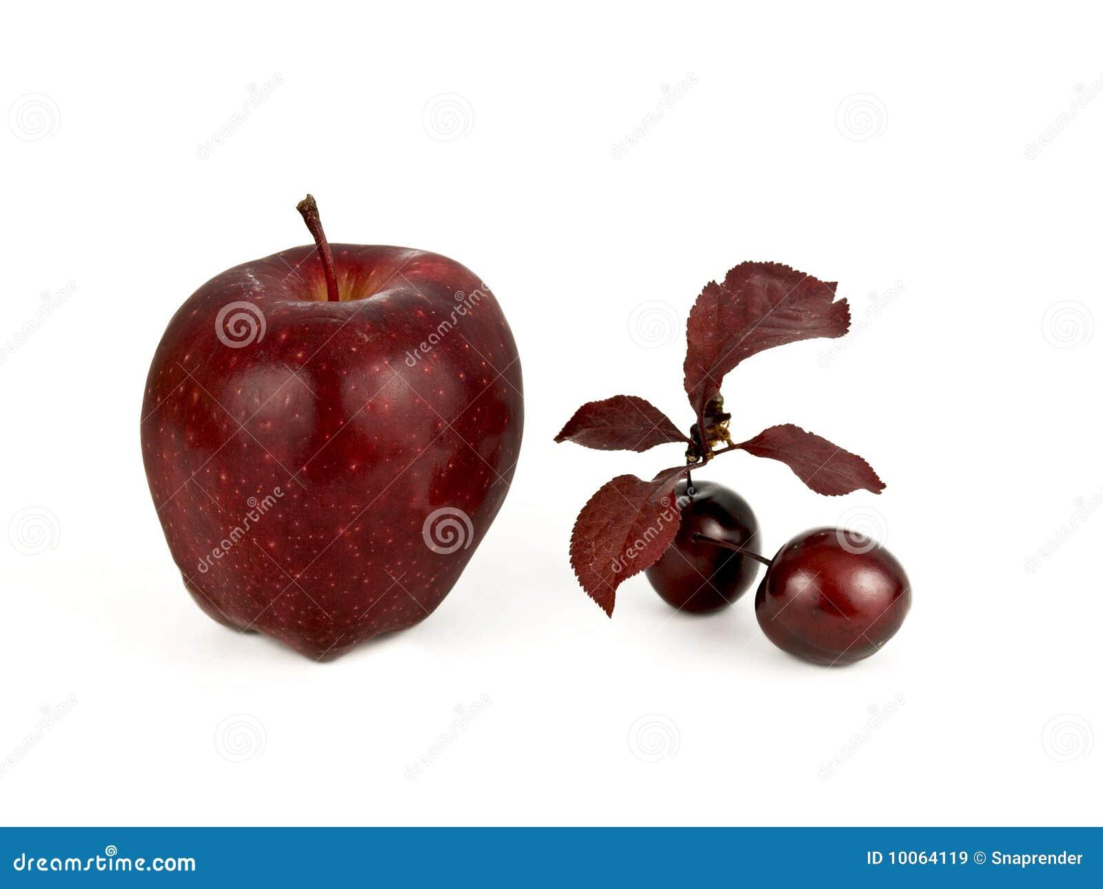 Fruta vermelha