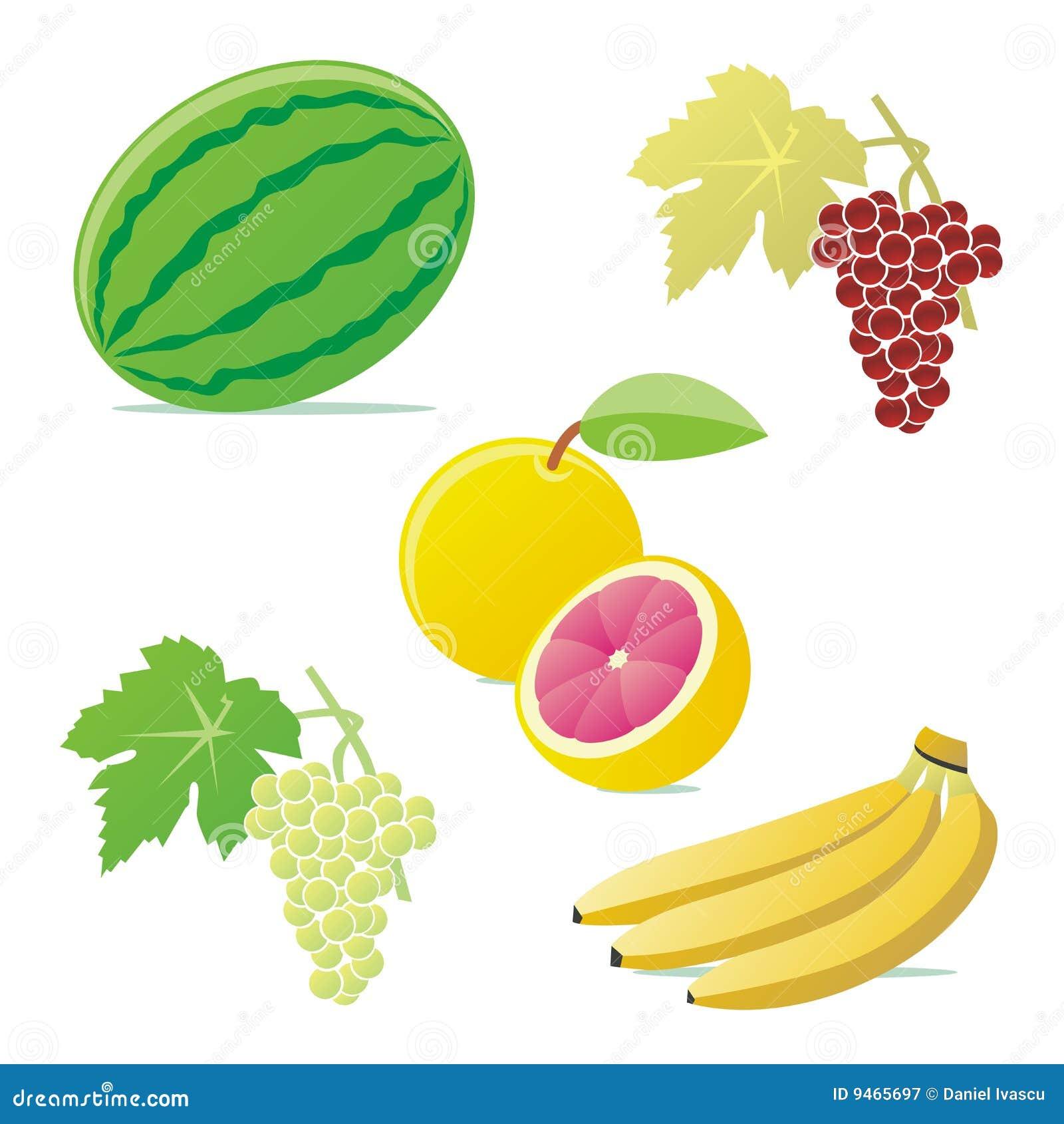 Frutas aisladas del vector