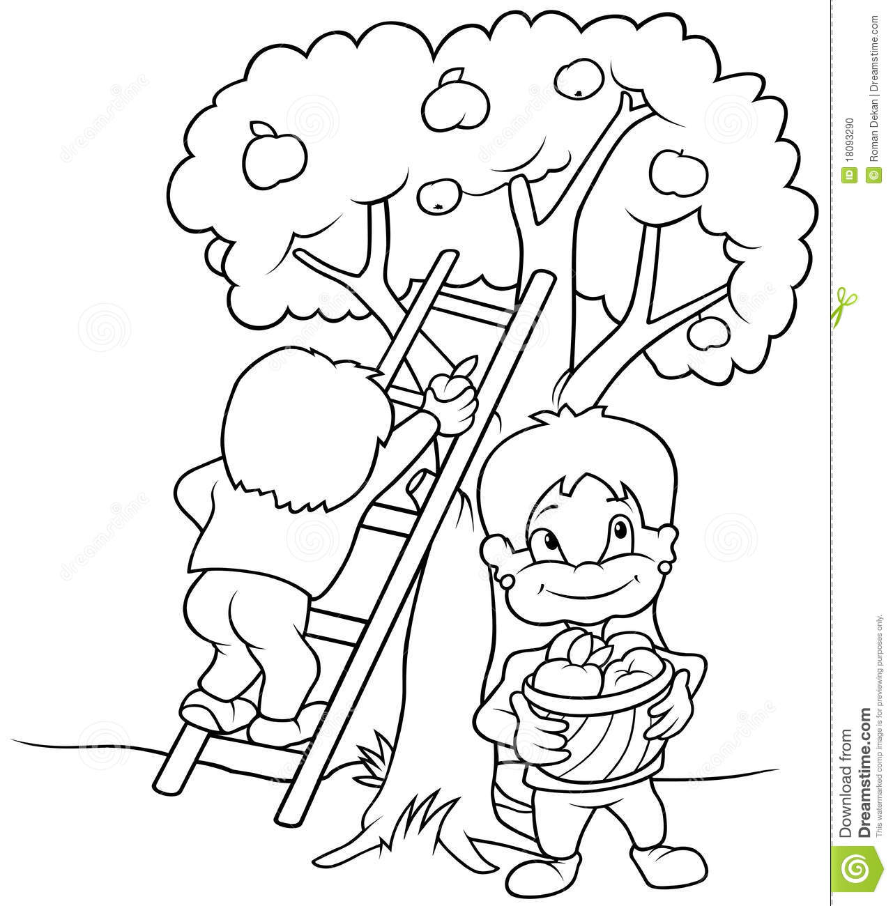 children picking apples coloring pages - photo#17