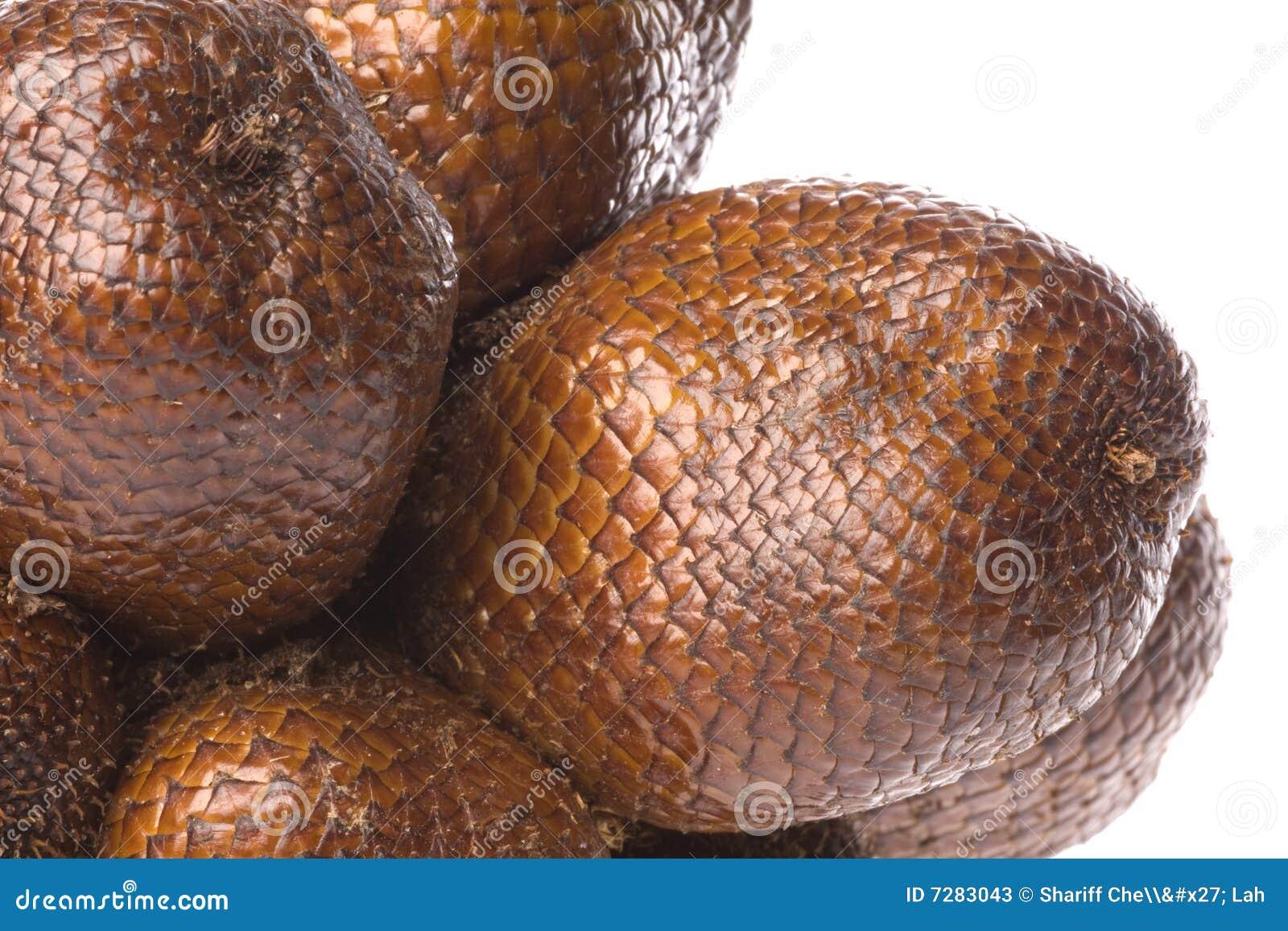 Frutas de la serpiente aisladas