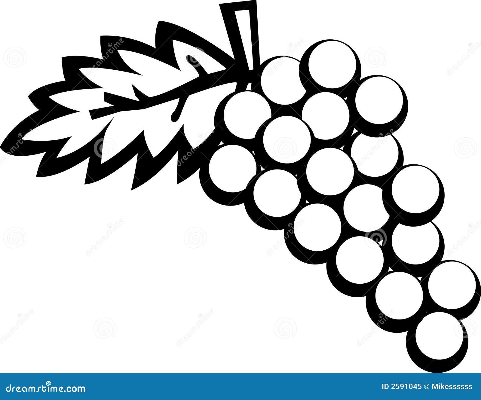Frutas de las uvas ilustración del vector. Ilustración de piel - 2591045