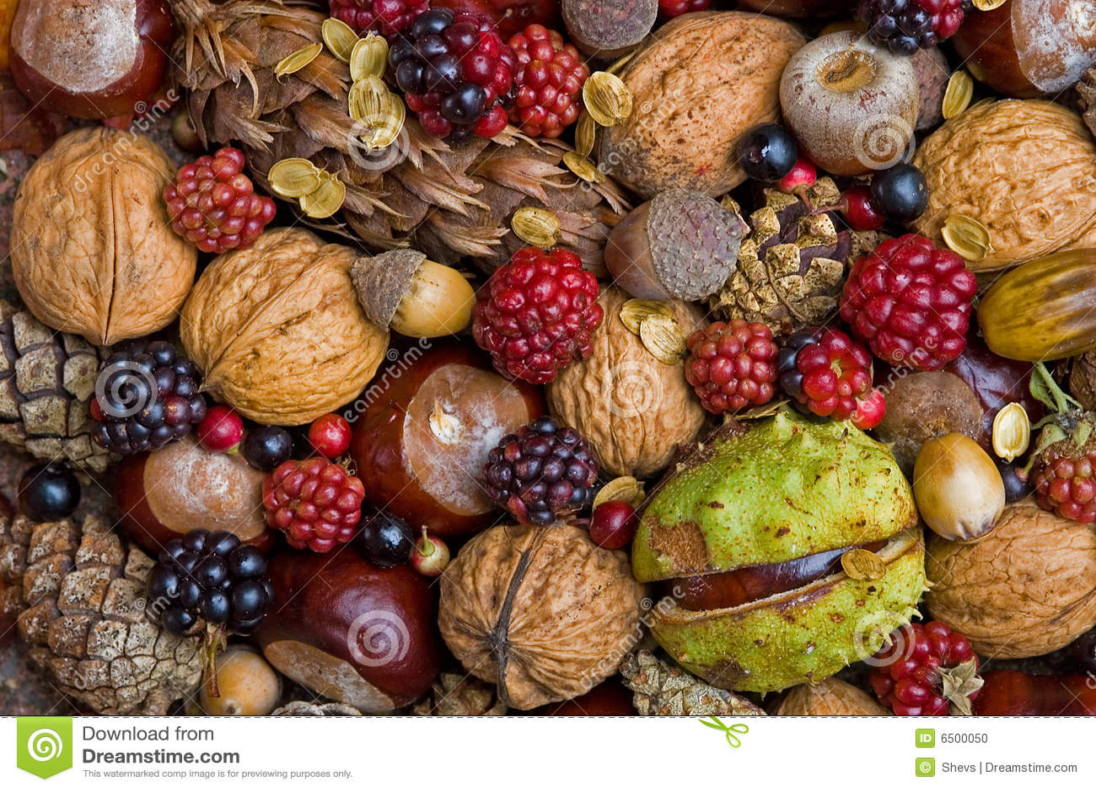 Frutas del otoño