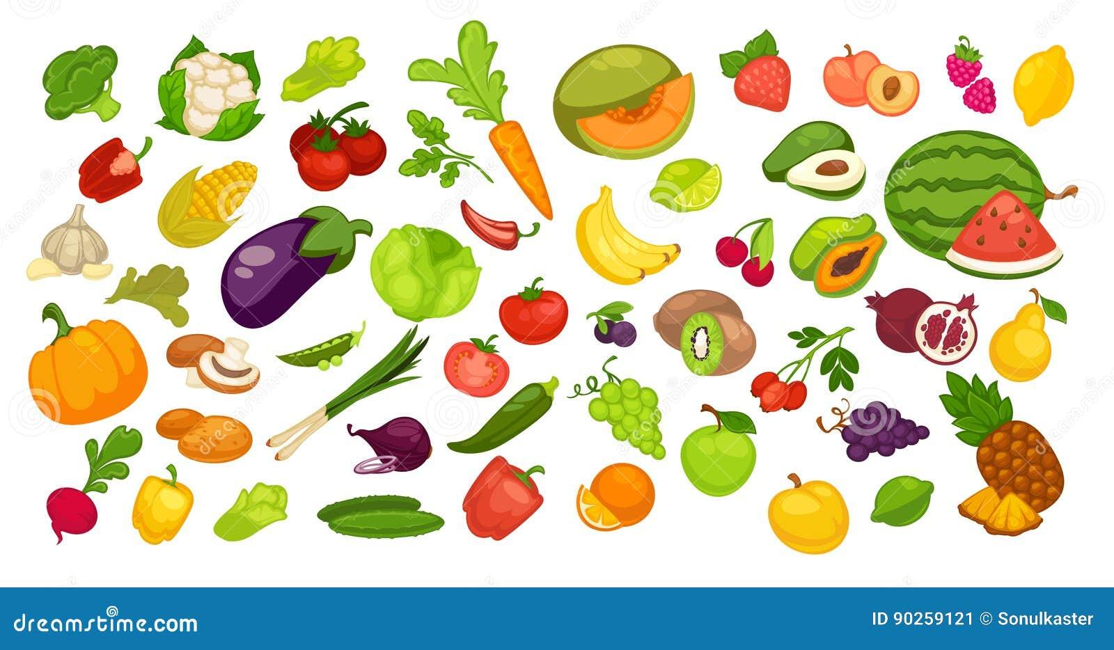 301441495 Coleção orgânica natural das frutas e legumes no branco Vector o cartaz  colorido dos bio produtos do verão e do outono inteiros e das peças próximo  Melancia ...