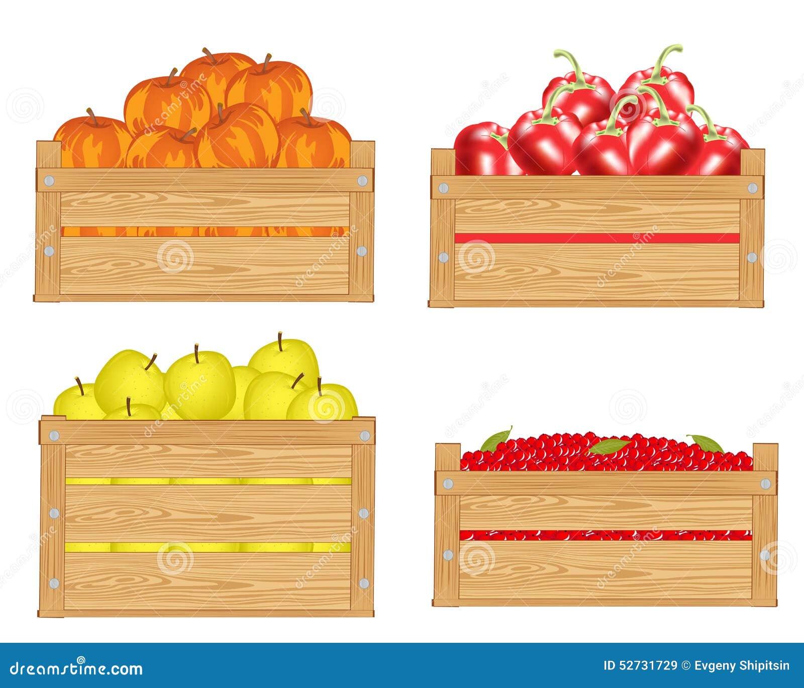 Frutas en caja ilustraci n del vector ilustraci n de colecci n 52731729 - Cajas de frutas ...