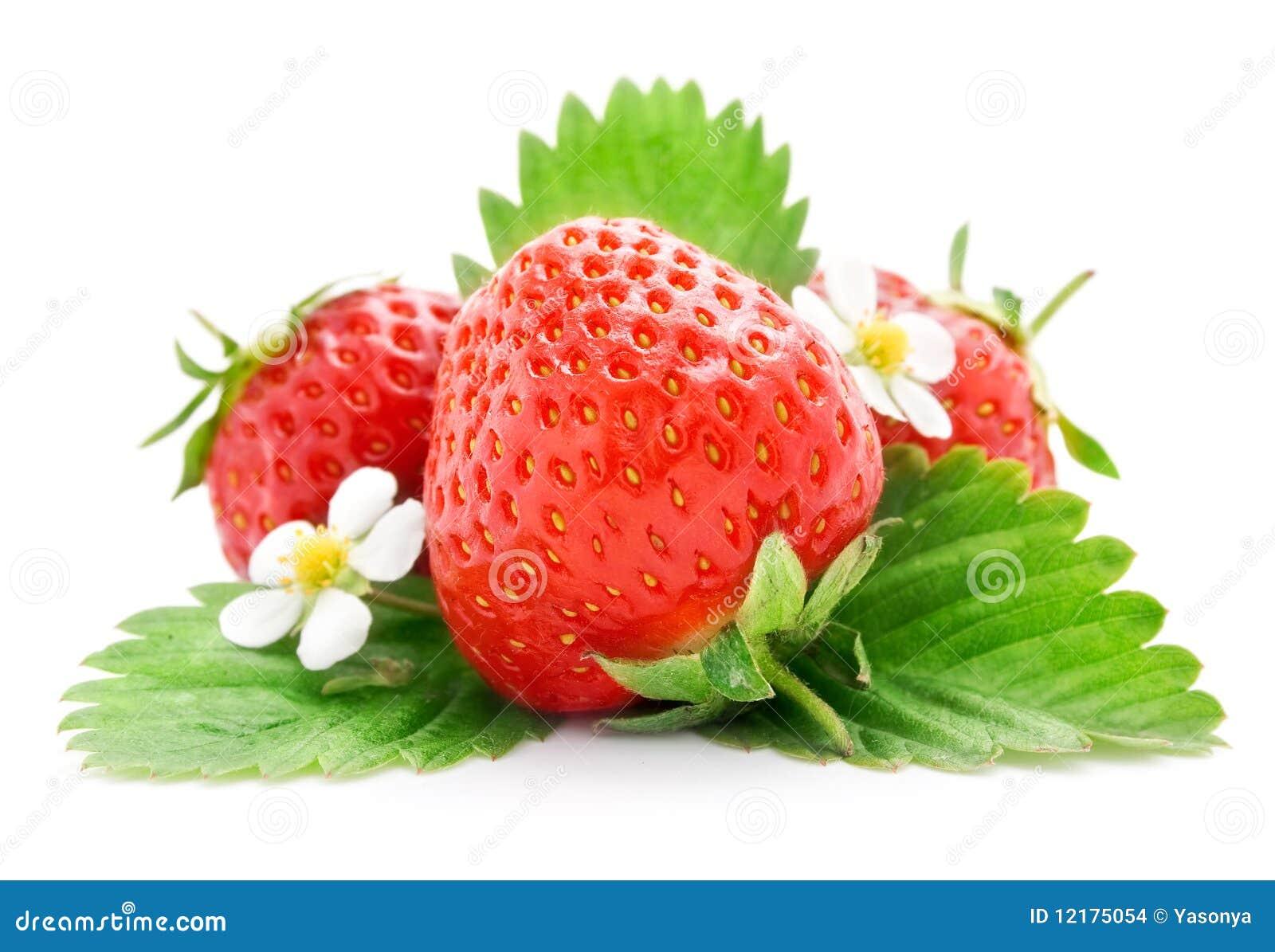 Frutas frescas da morango com flores e folhas