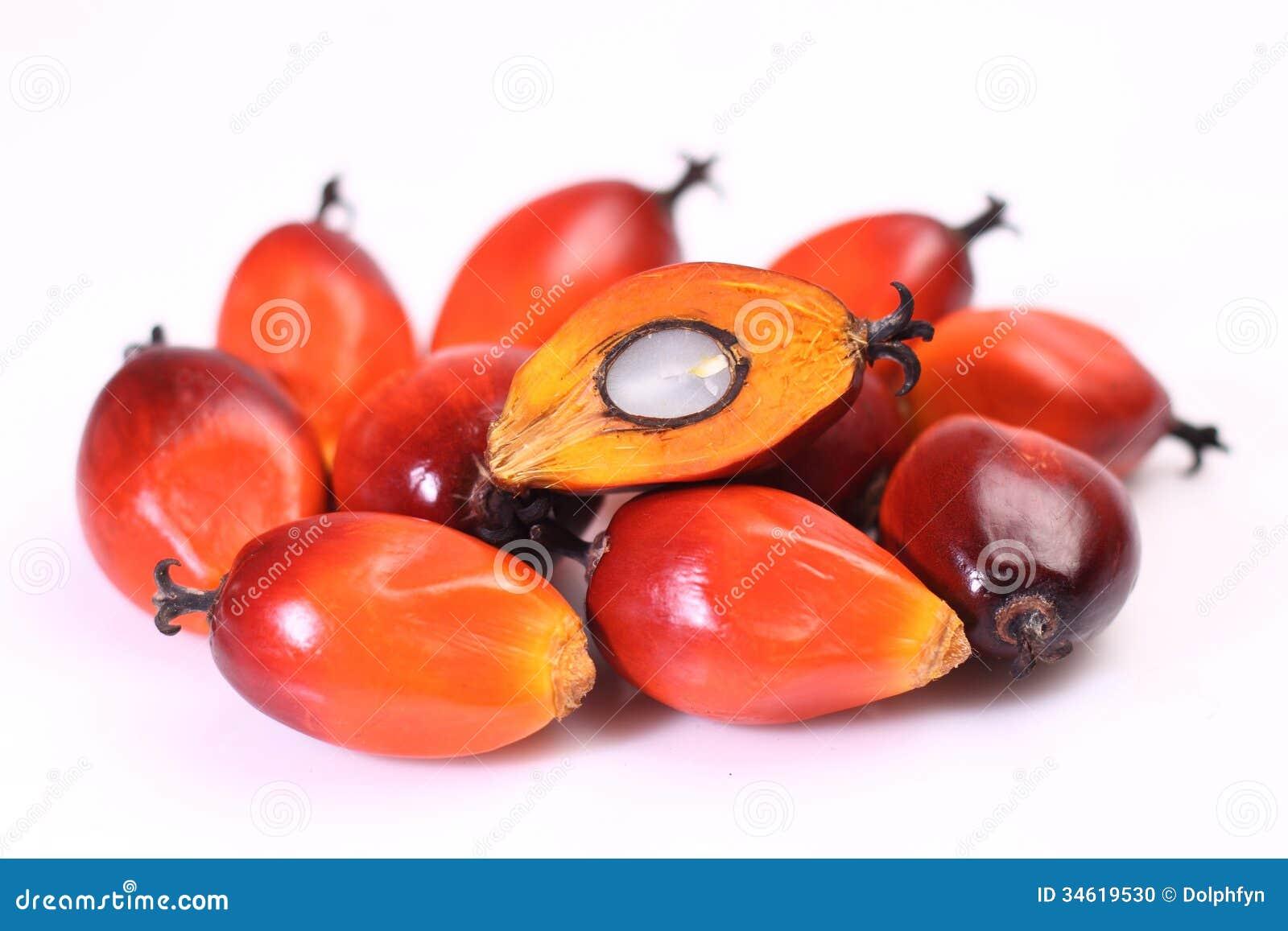 Fruto da palma de óleo