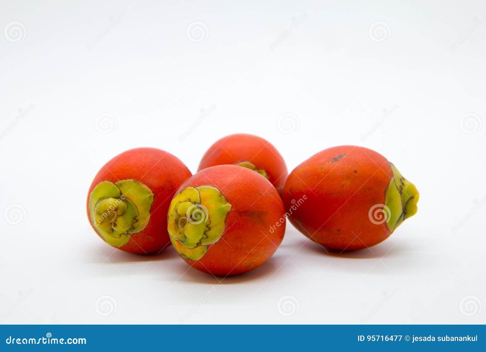 Fruto da palma de Raja no fundo branco,