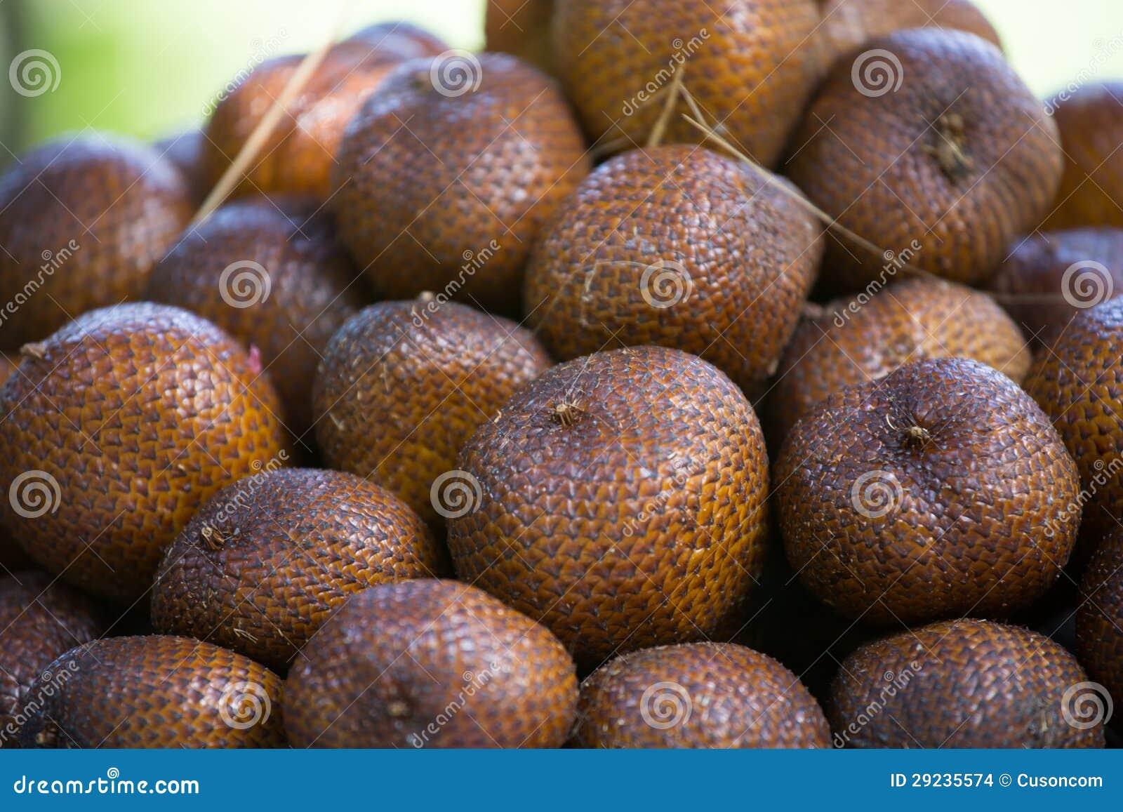 Download Fruto da serpente foto de stock. Imagem de inteiro, alimento - 29235574