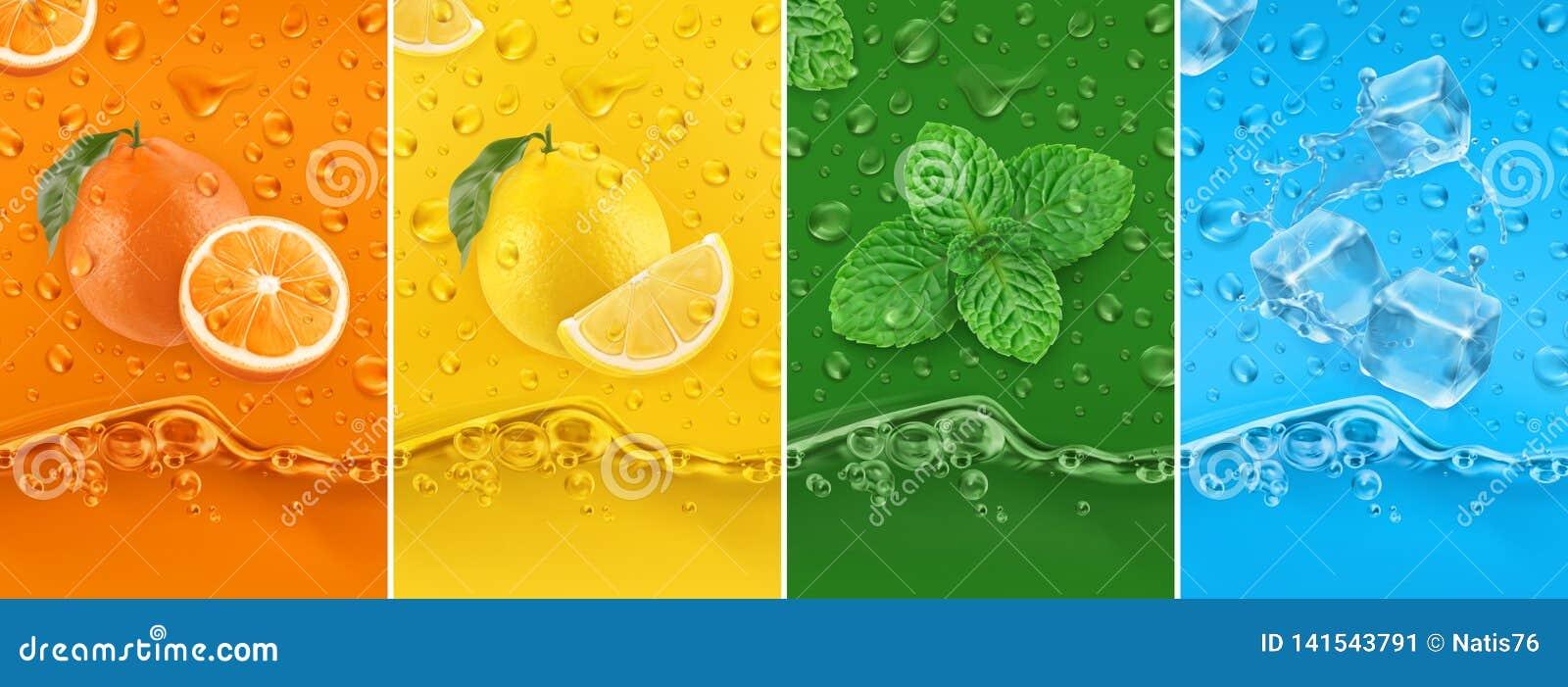 Fruto suculento e fresco Laranja, limão, hortelã, água de gelo Gotas e respingo de orvalho grupo do vetor 3d 50mb de alta qualida