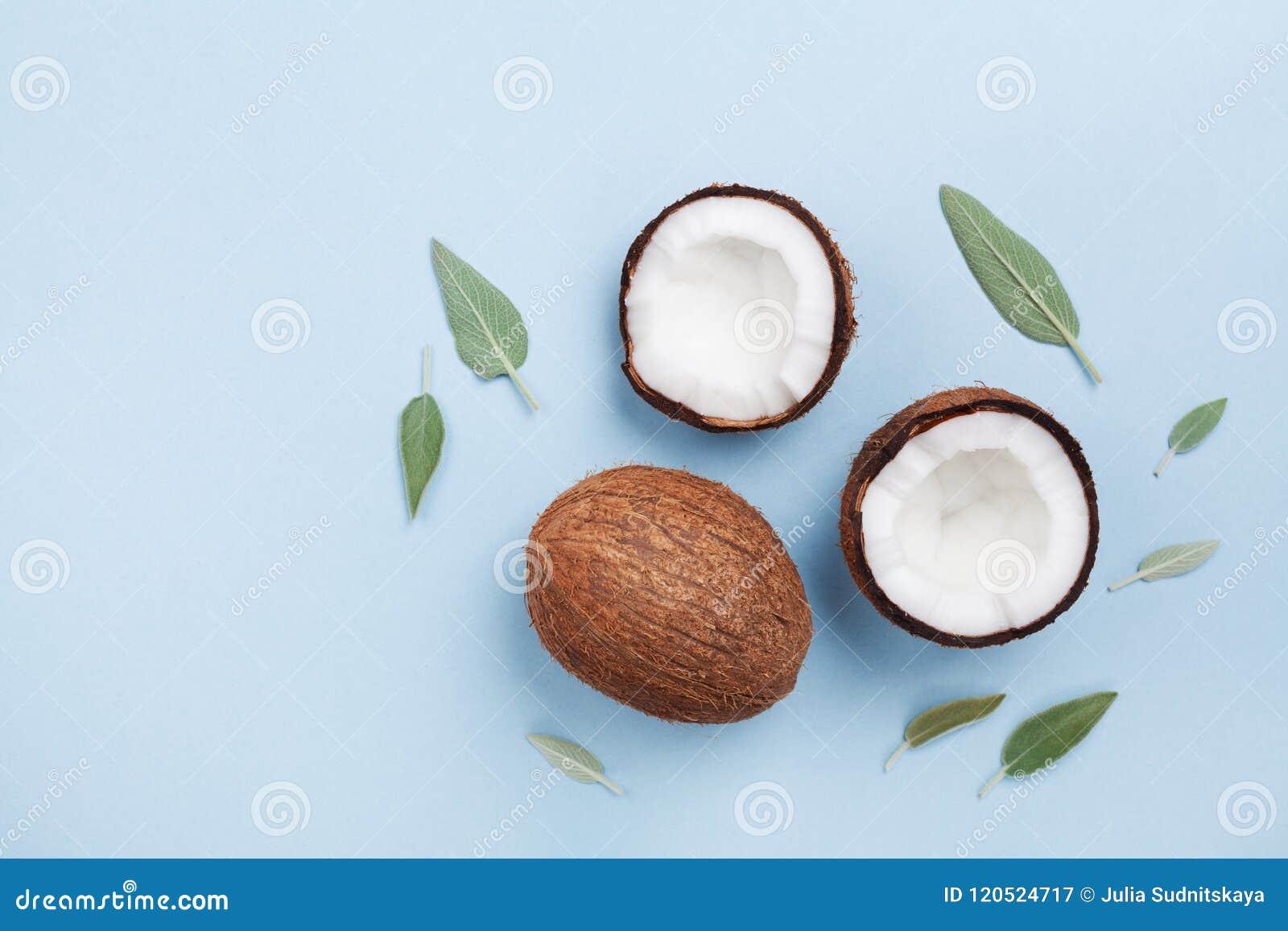Fruto tropical do coco inteiro e meio na opinião superior do fundo pastel azul estilo liso da configuração