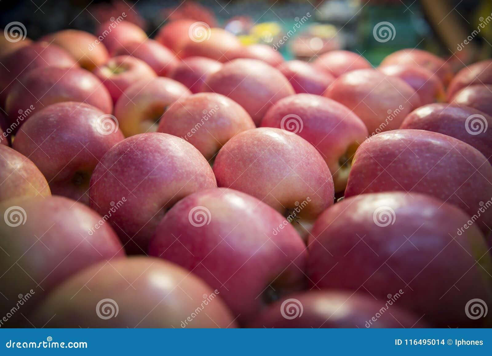 Fruto vermelho das maçãs