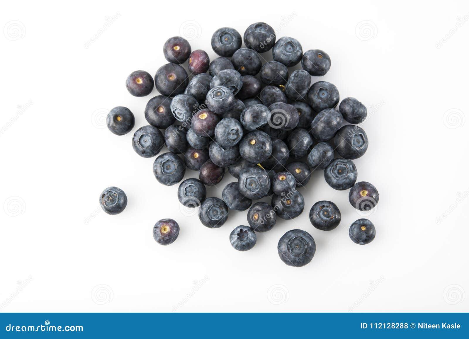 Fruto: Vista superior de mirtilos frescos no fundo branco