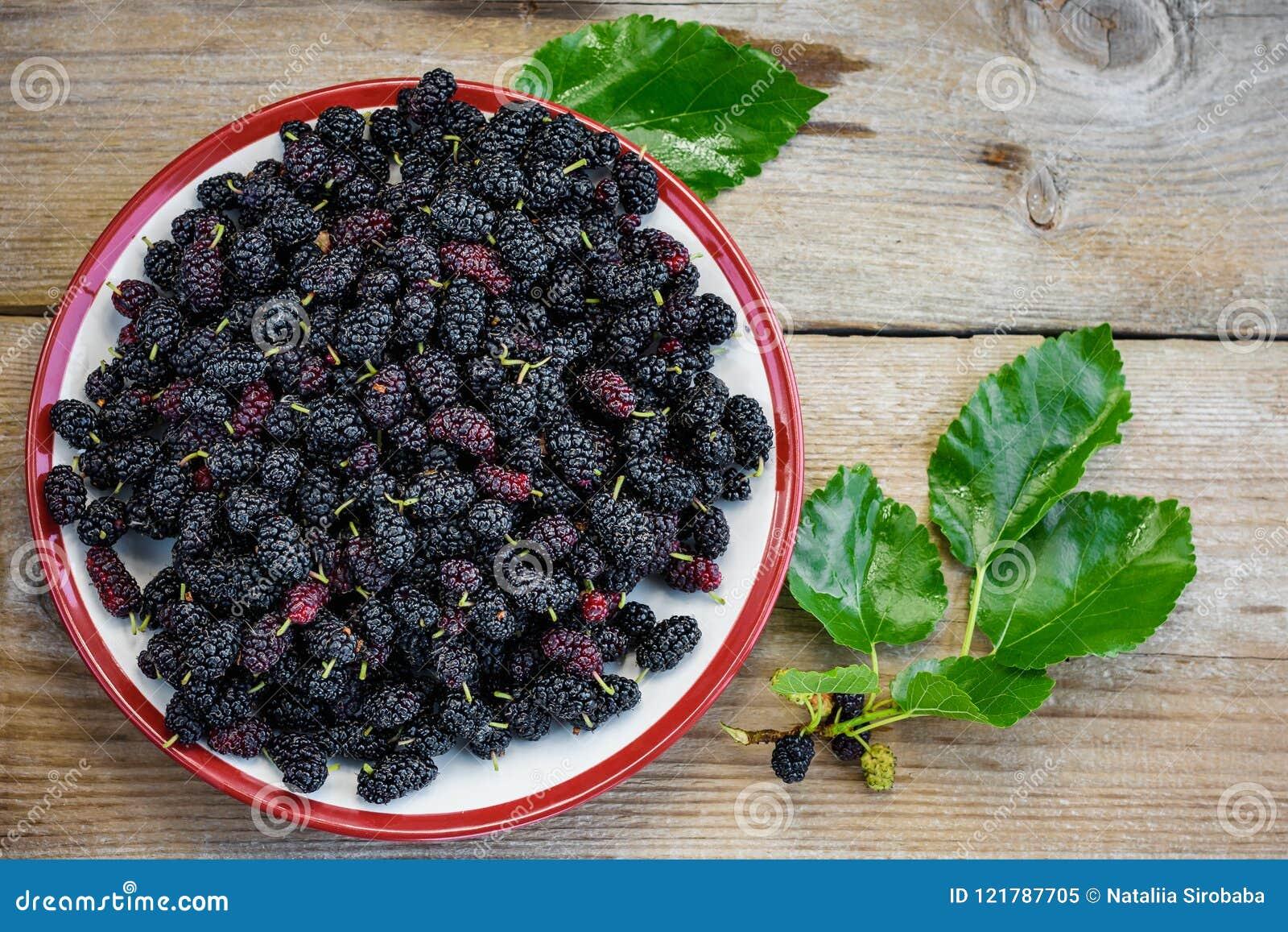 Frutos da amoreira