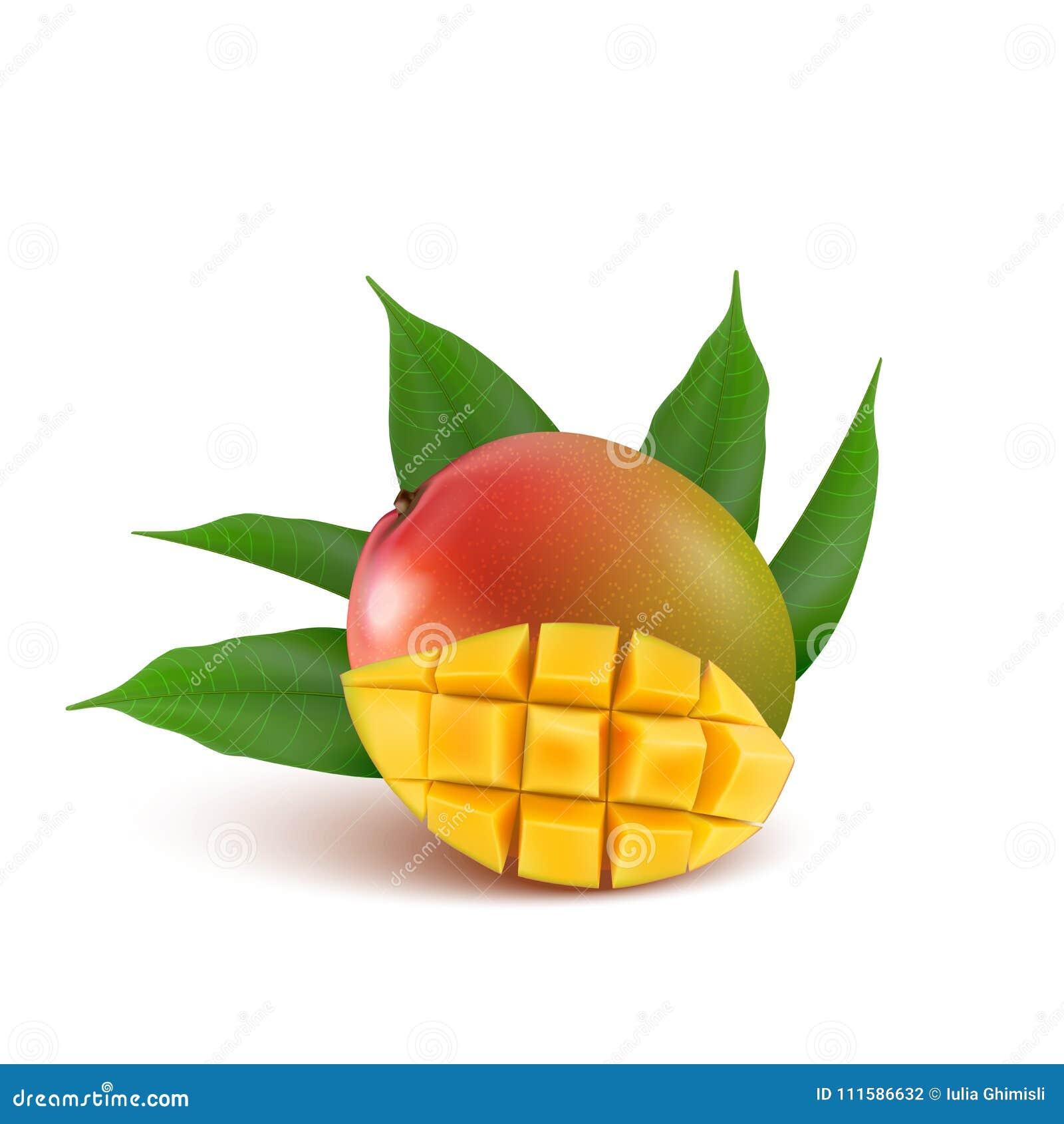 Frutta del mango per succo fresco, inceppamento, yogurt, polpa yel realistico 3d