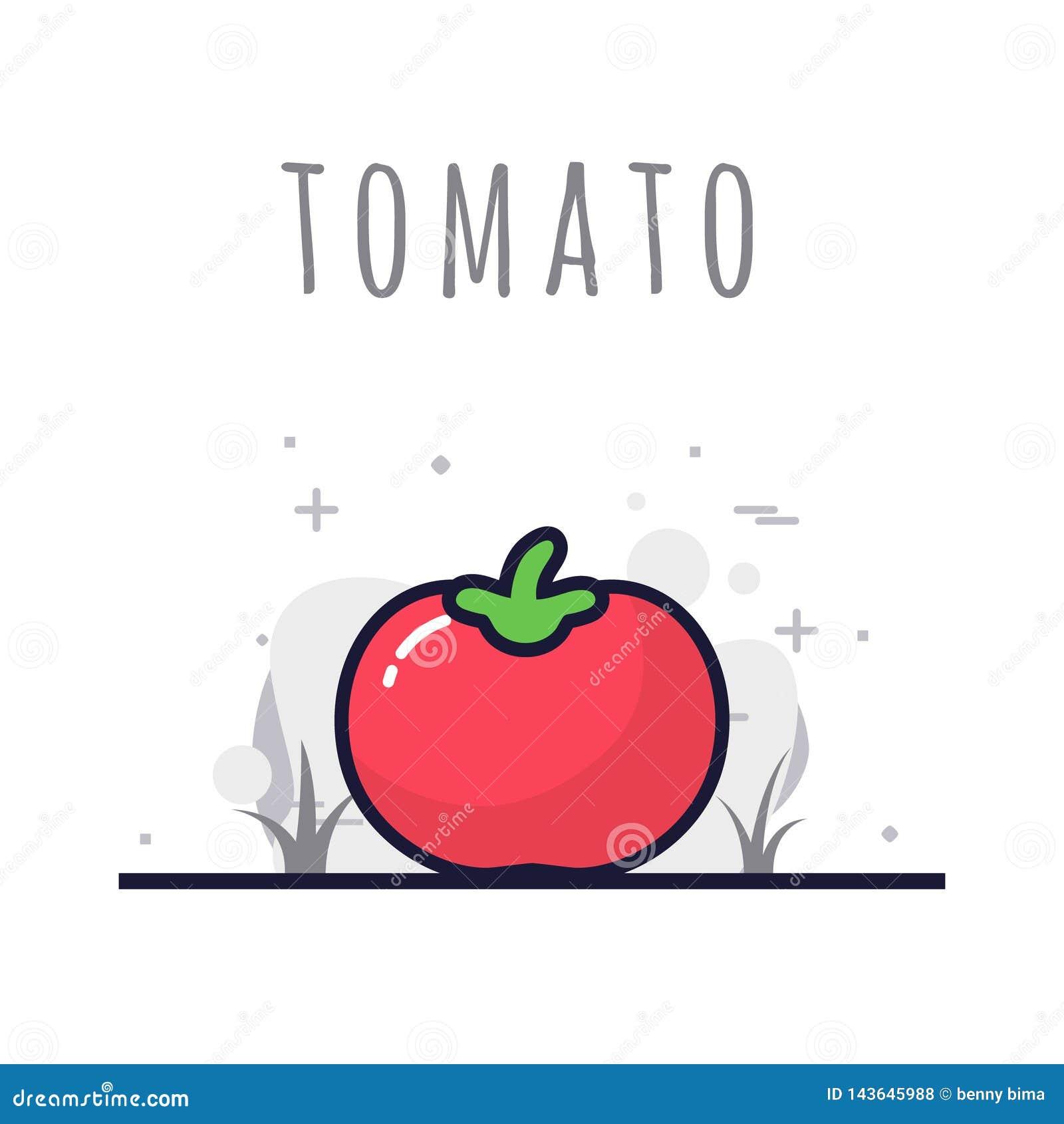 Frutta del pomodoro fresca