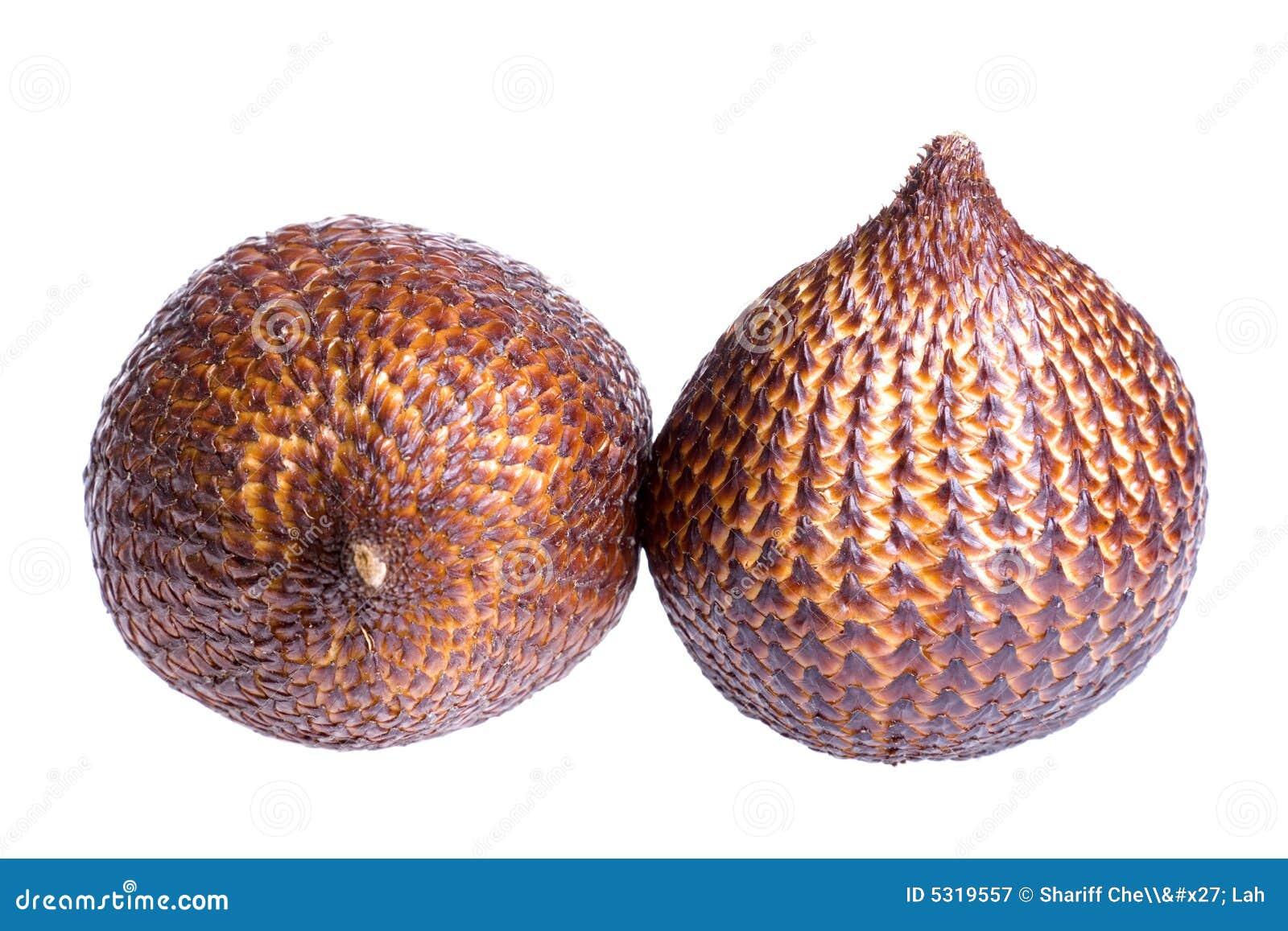Download Frutta del serpente immagine stock. Immagine di frutte - 5319557