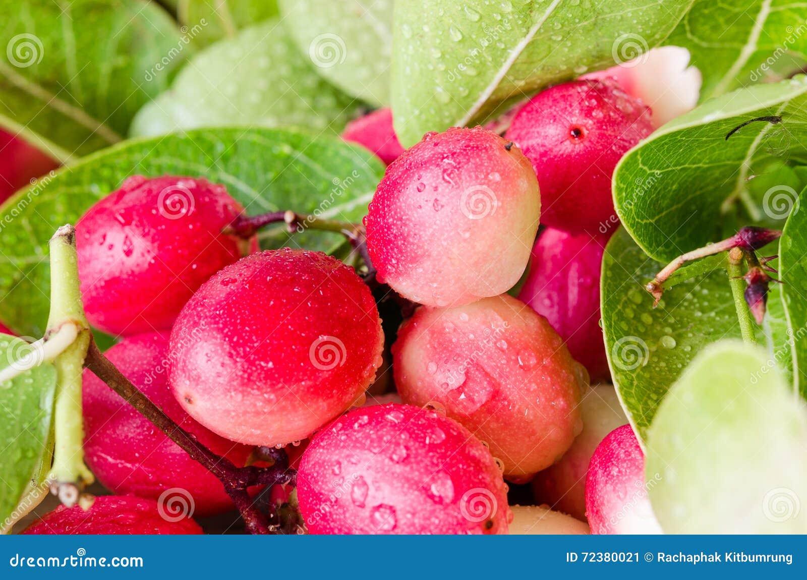 Frutta di Karanda nel mercato tailandese