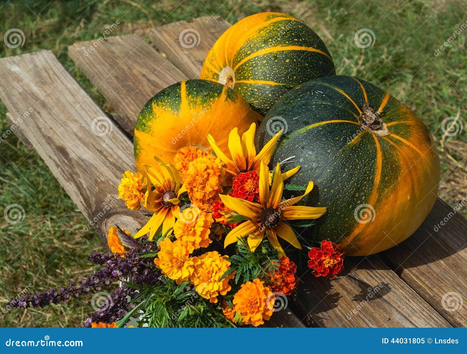 Frutta verdure e fiori di autunno immagine stock for Immagini fiori autunnali