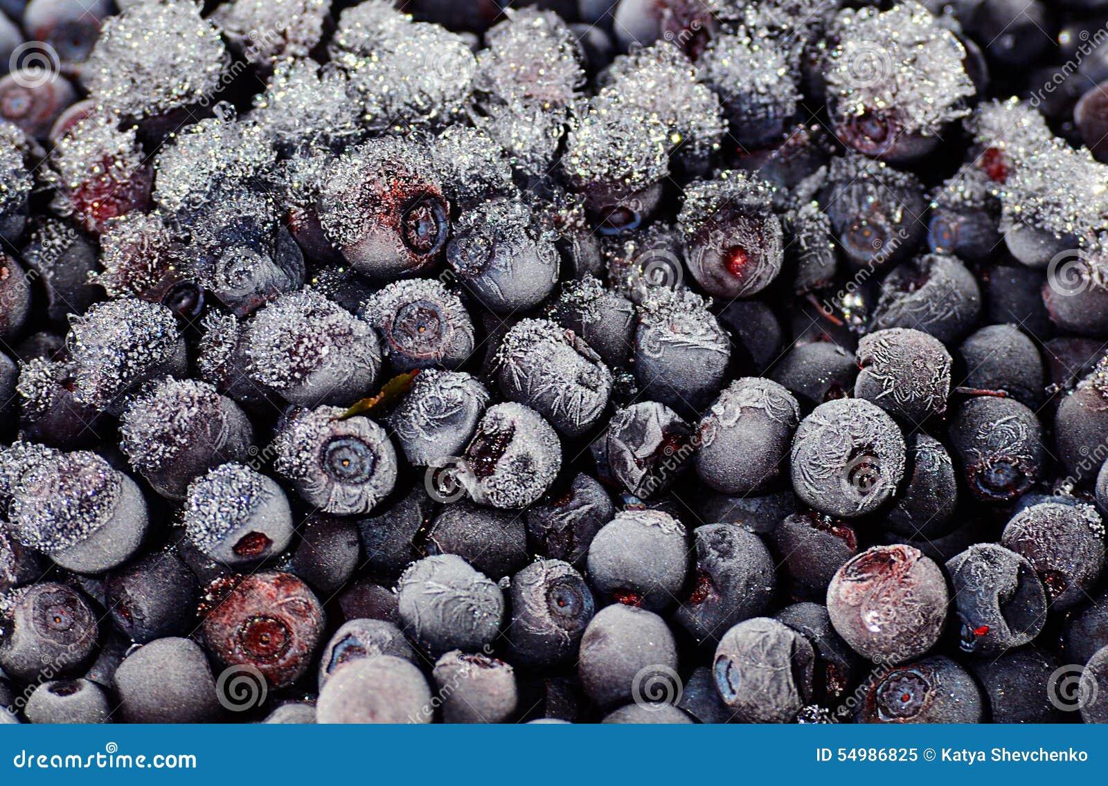 Fryste blåbär