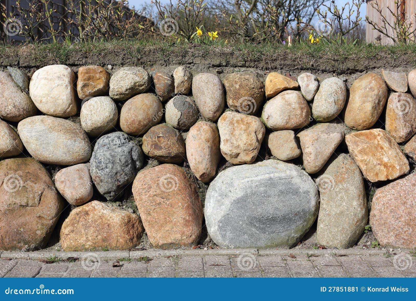 Fryzyjska kamienna ściana zasadzająca z Dzikim daffodil