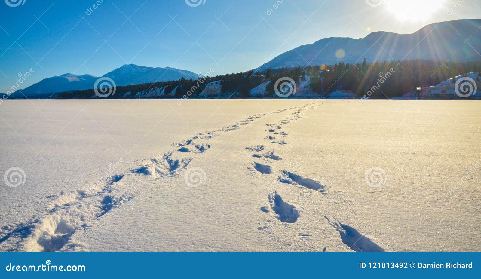 Fuß druckt im Schnee, Winterberglandschaft