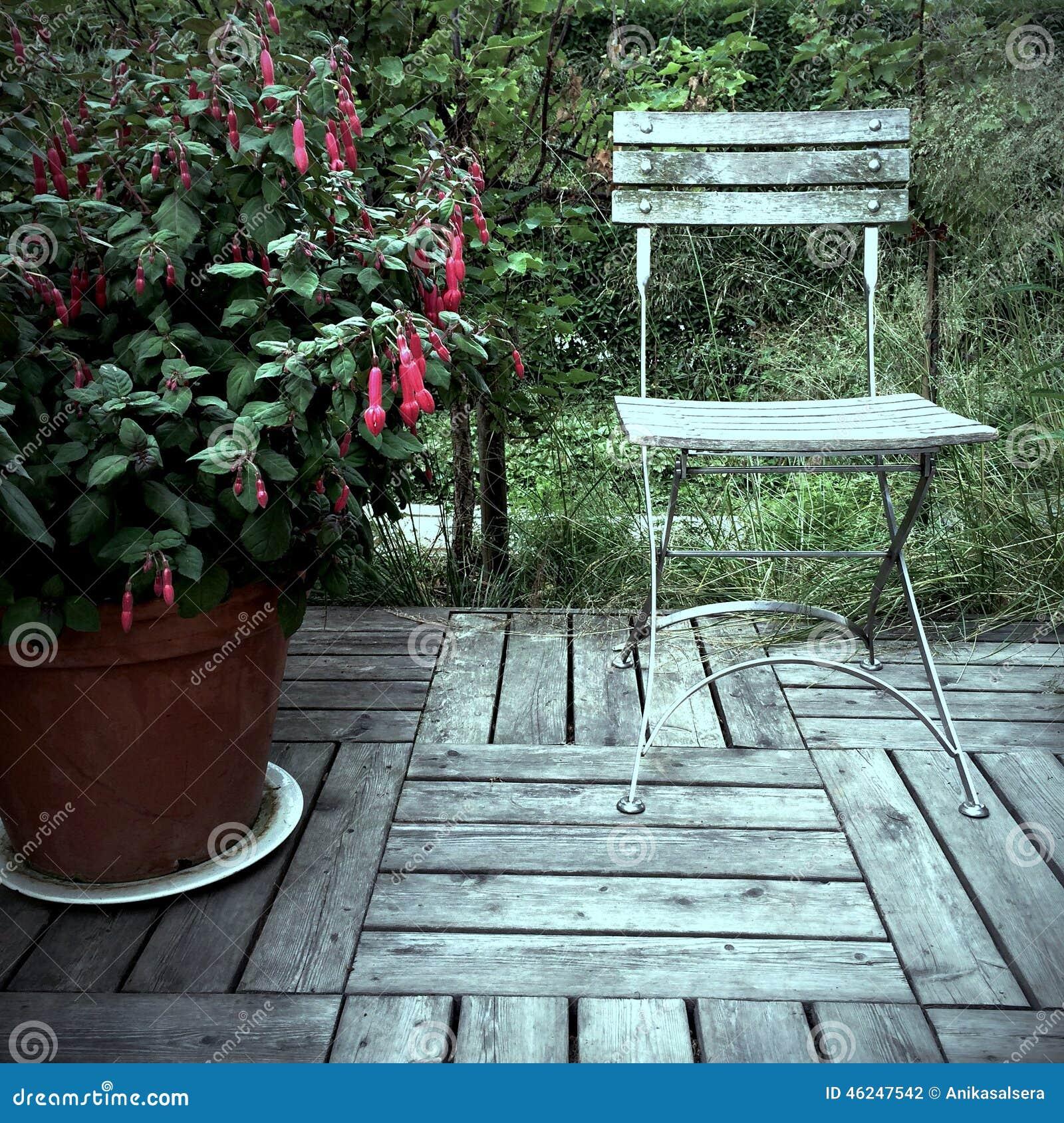Fuchsia rouge et vieille chaise en bois