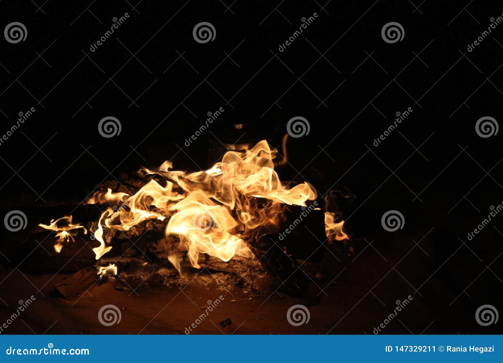 Fuego ardiendo en viaje del safari