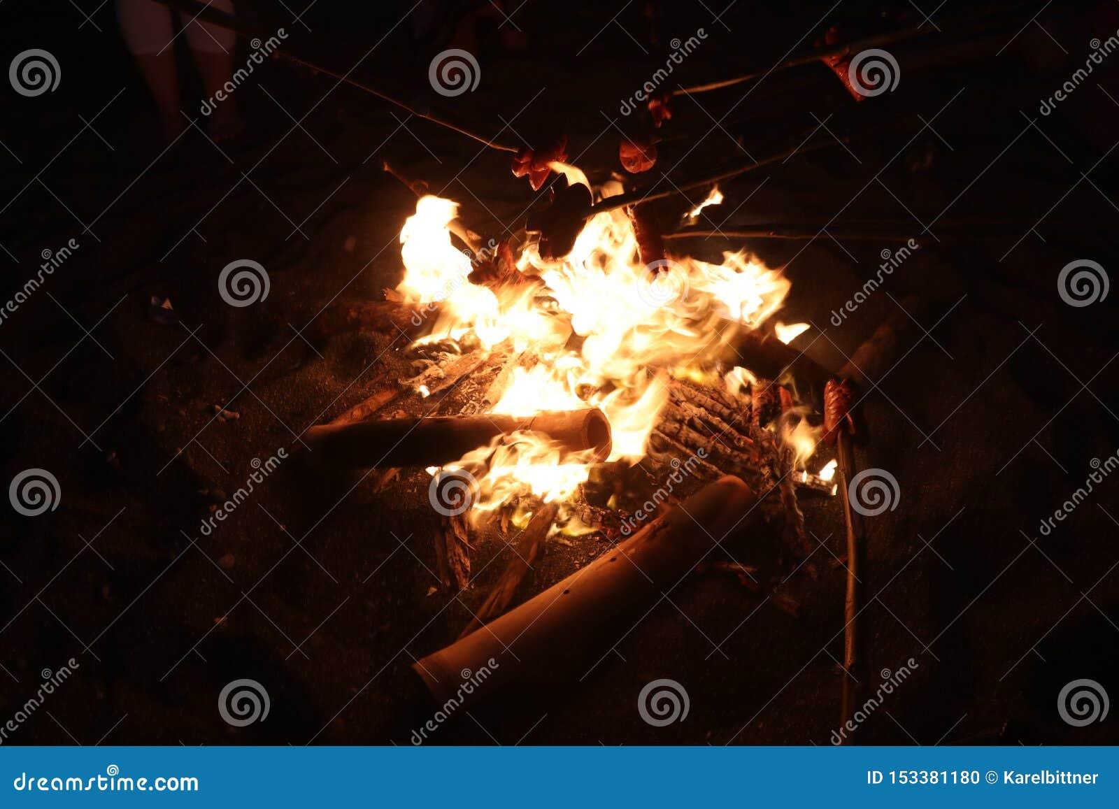 Fuego en la playa Igualando la barbacoa y tostar las salchichas Llamas que oscilan con la oscuridad Reunión tradicional de la hog