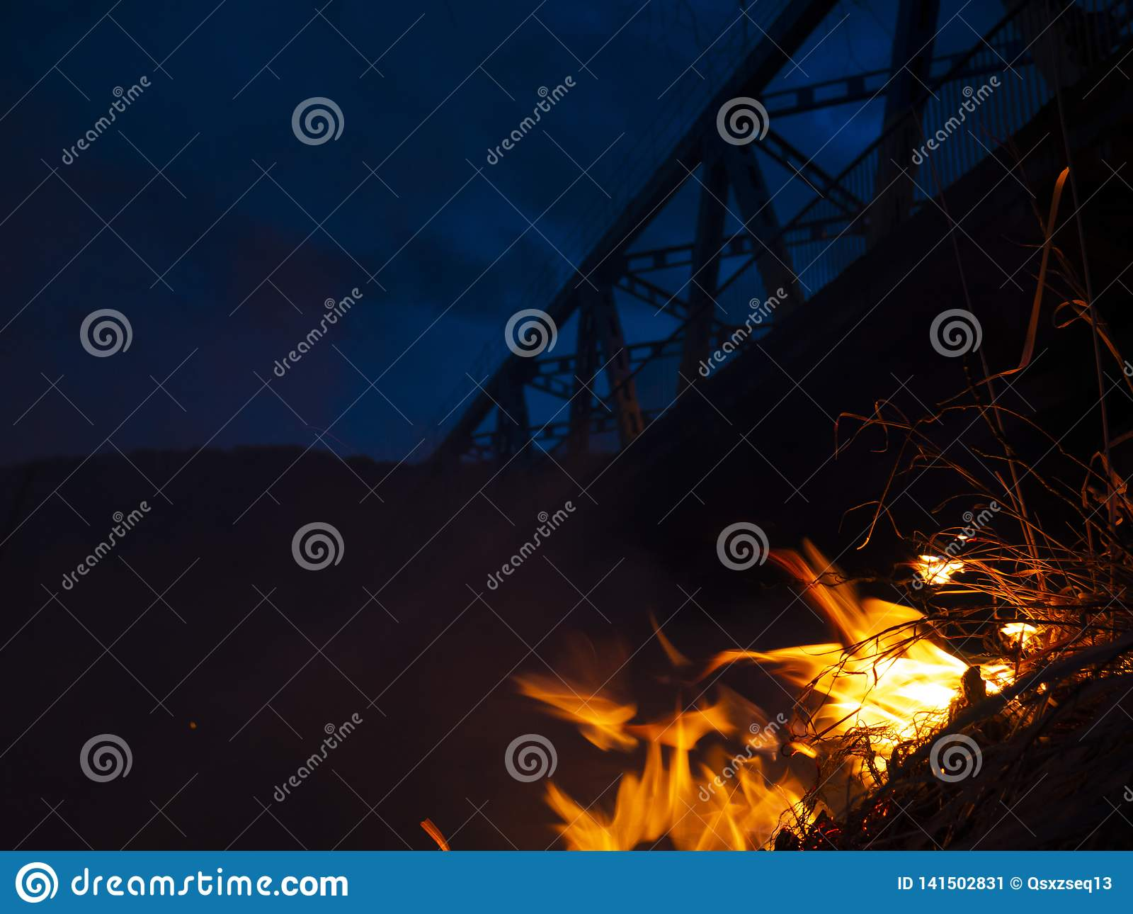 Fuego incendio fuera de control, bosque ardiente del pino en el humo y llamas
