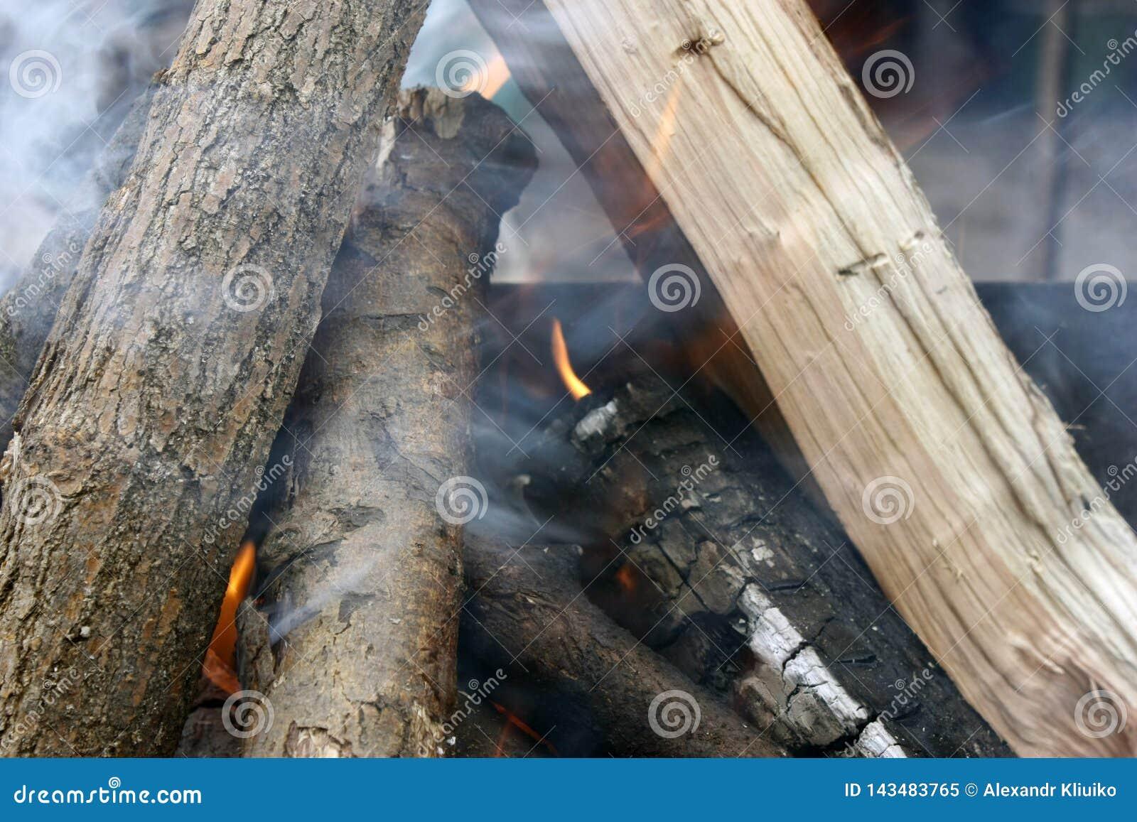 Fuego Primer de la pila de quema de madera con las llamas en la chimenea