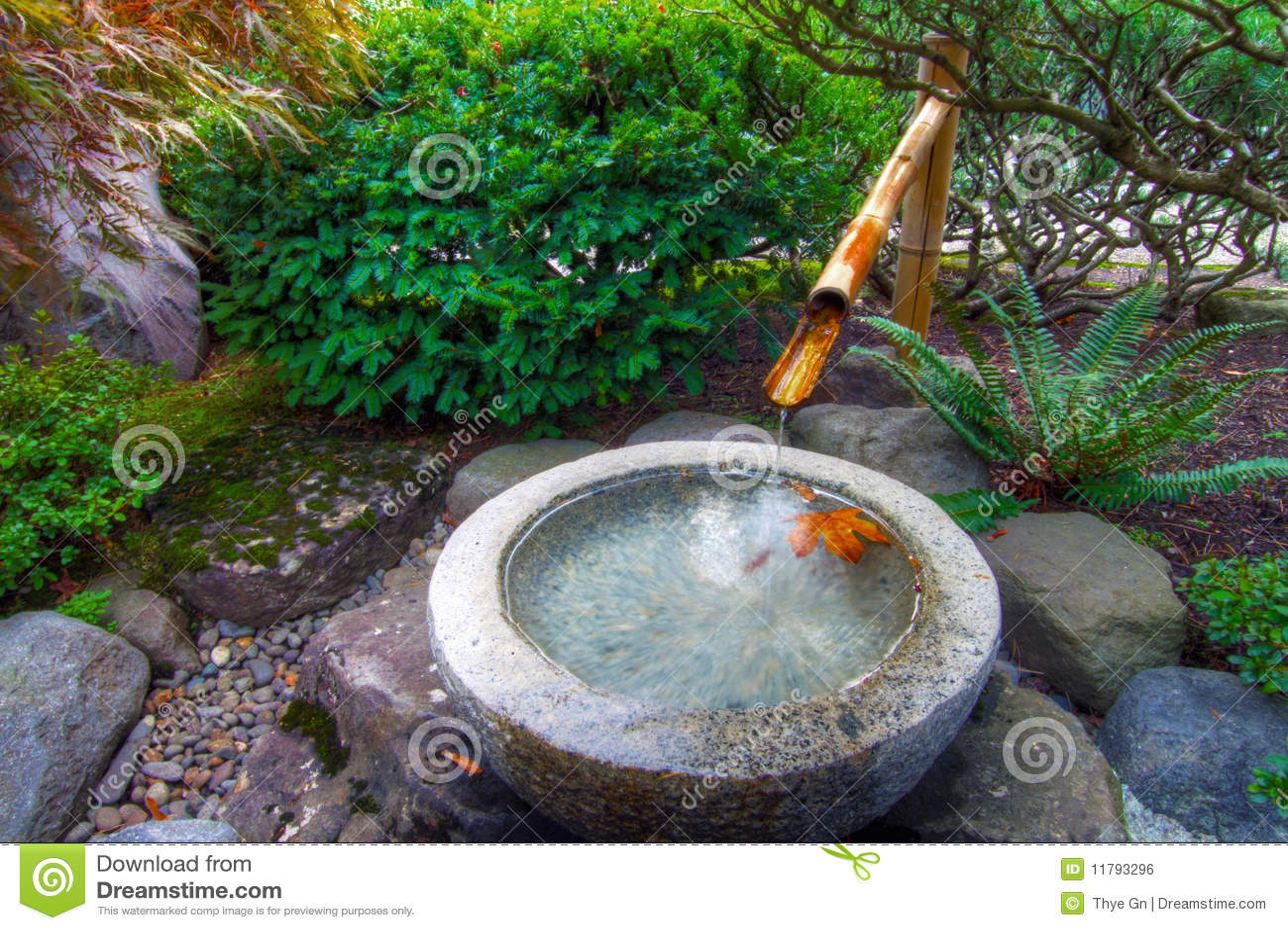 Fuente De Agua De Bambú En Jardín Japonés Imagen de ...