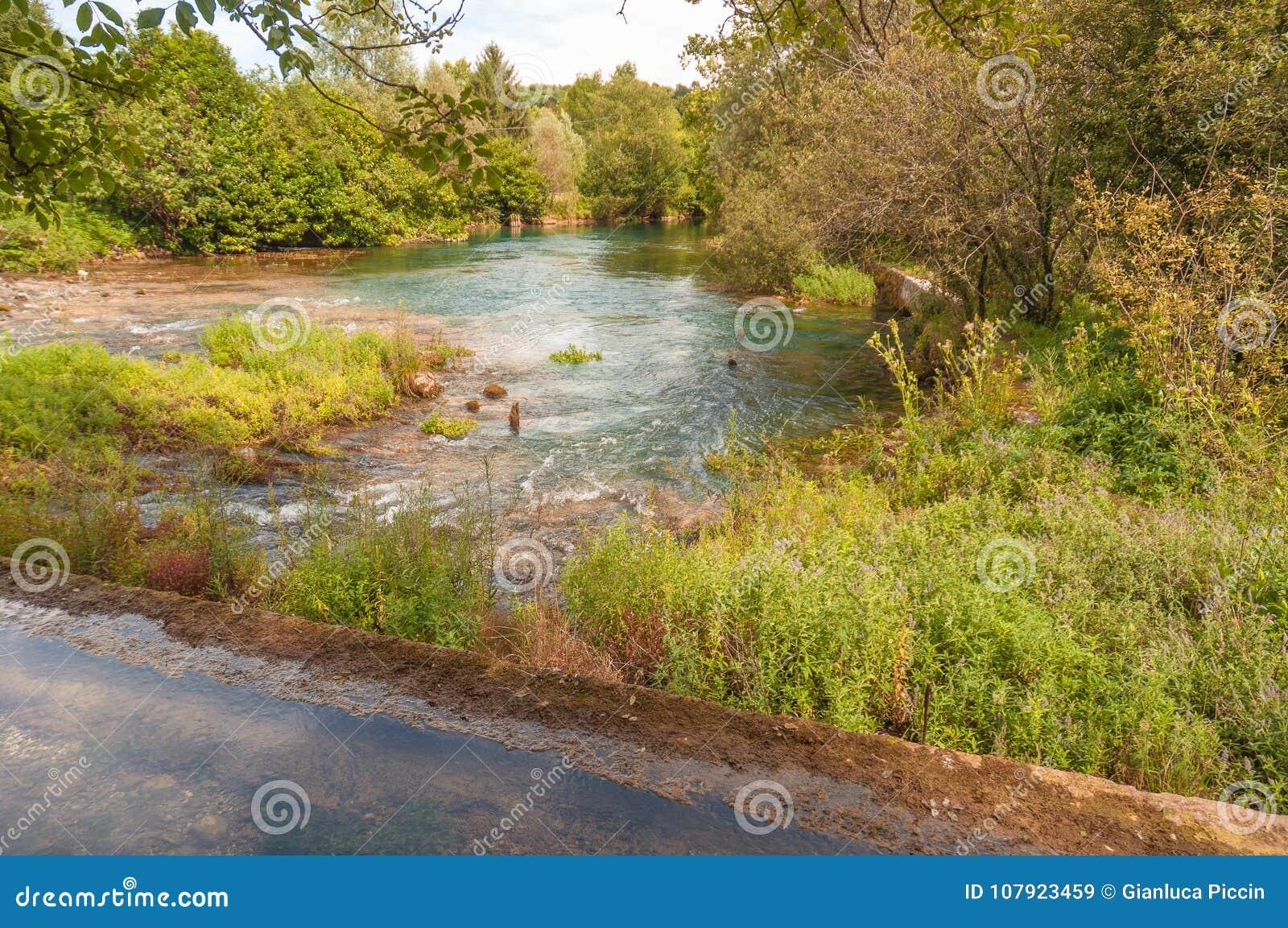 Fuente del río de Livenza, Italia