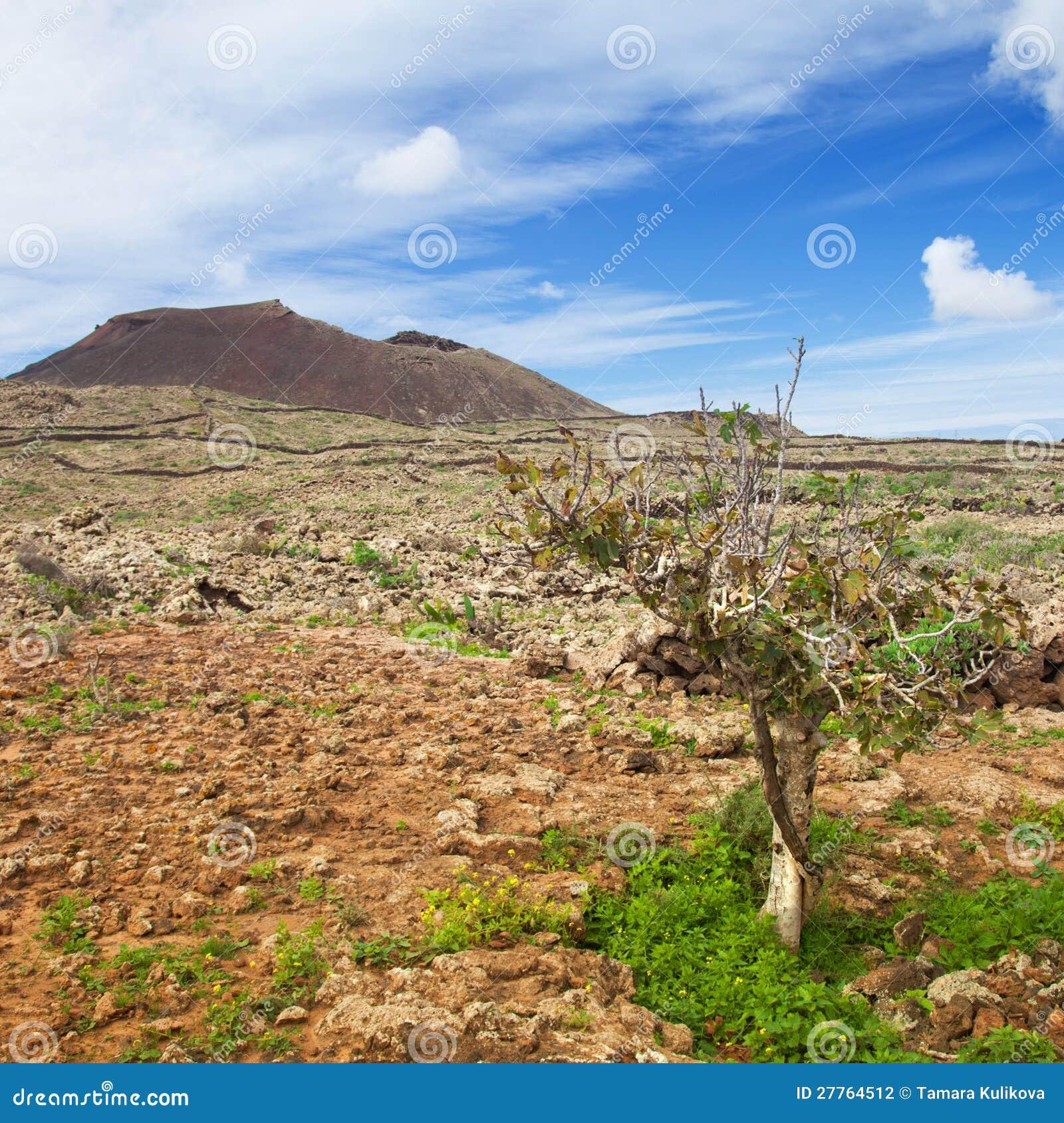Fuerteventura intérieur, Malpais de la Arena