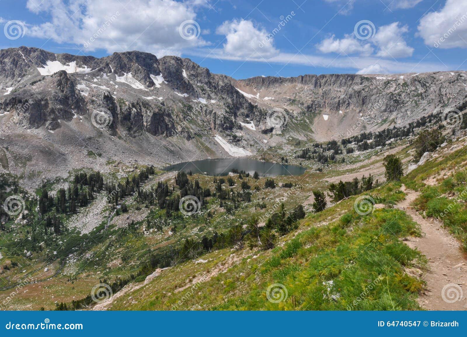 Fuga da garganta do pincel no parque nacional grande de Tetons, Wyoming,