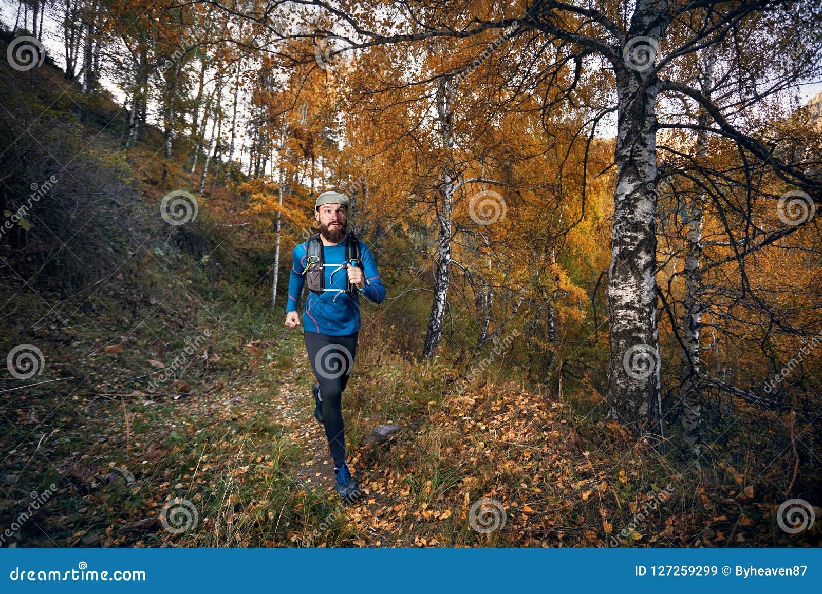 Fuga que corre na floresta