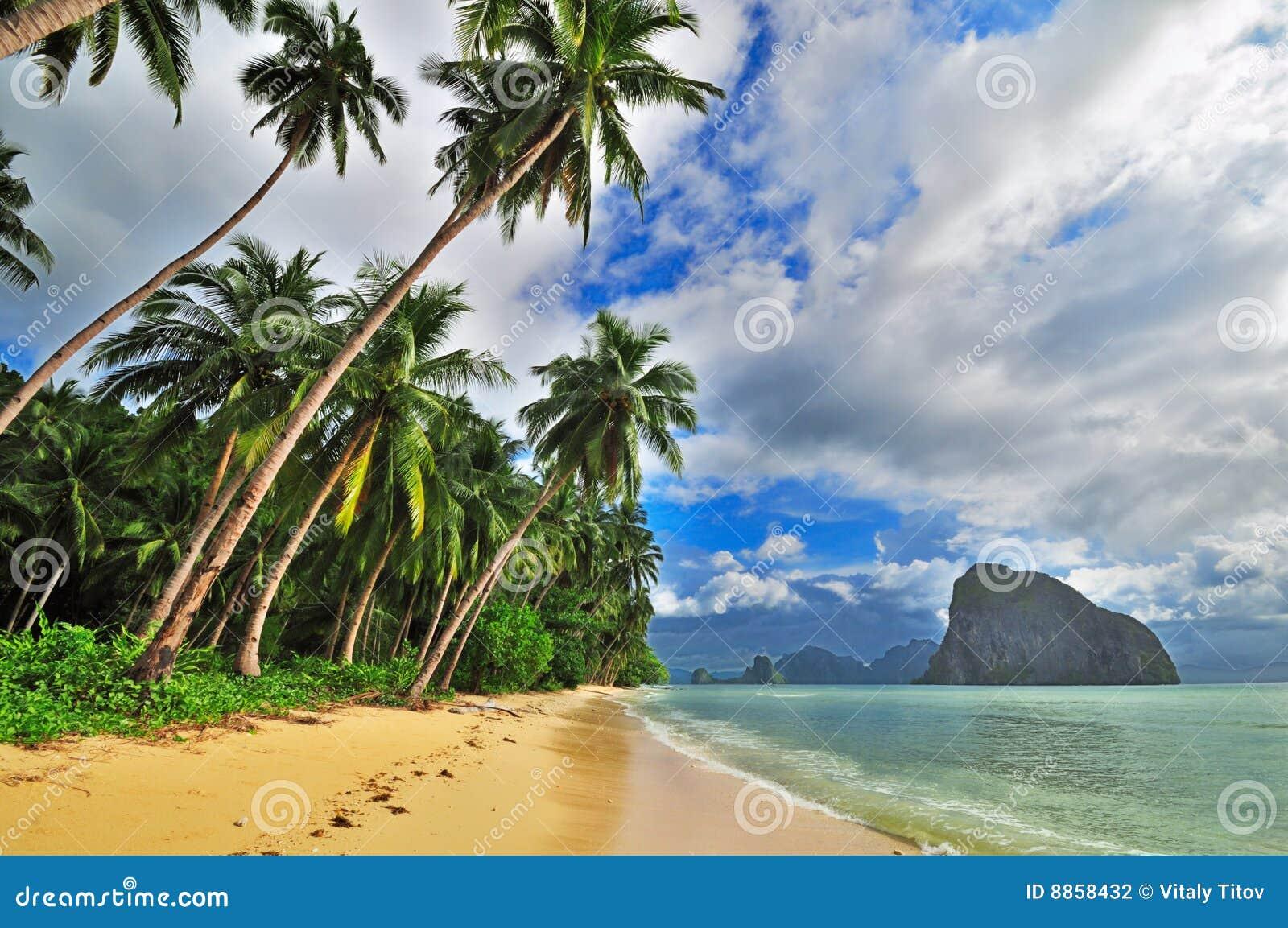 Fuga tropical do mar