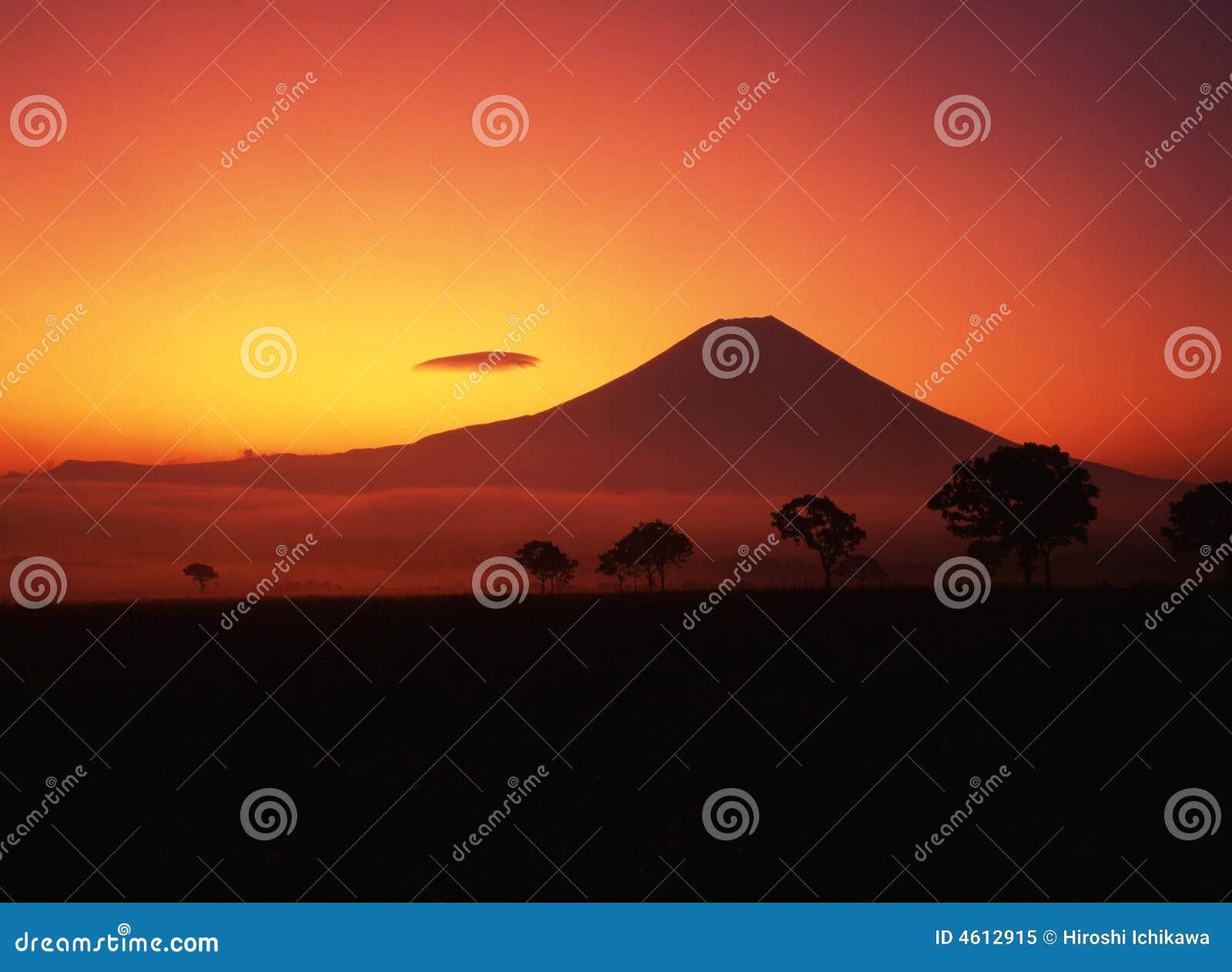 Fuji 426 mt