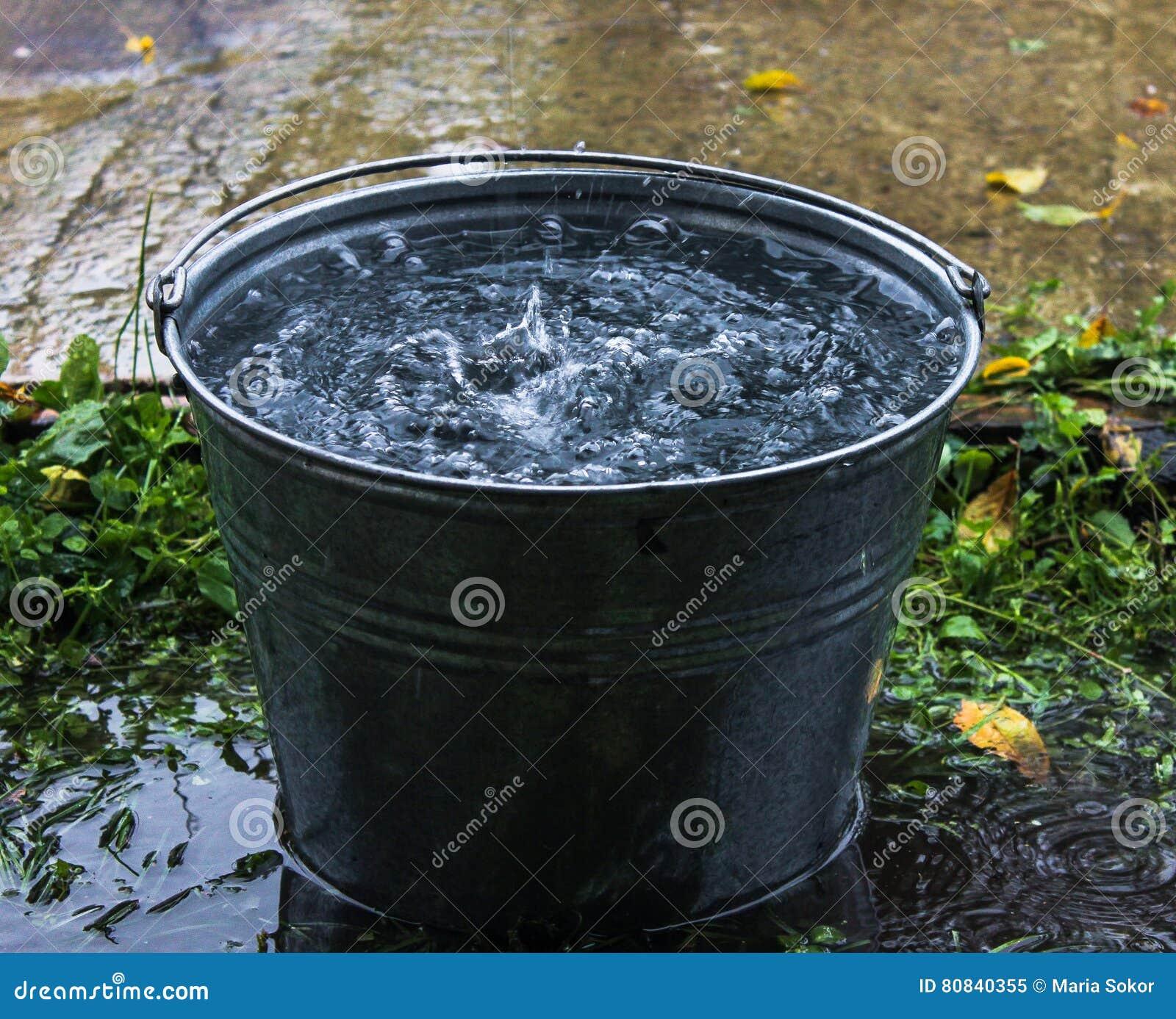 Full Bucket Of Water Rain Stock Image Image Of Drop