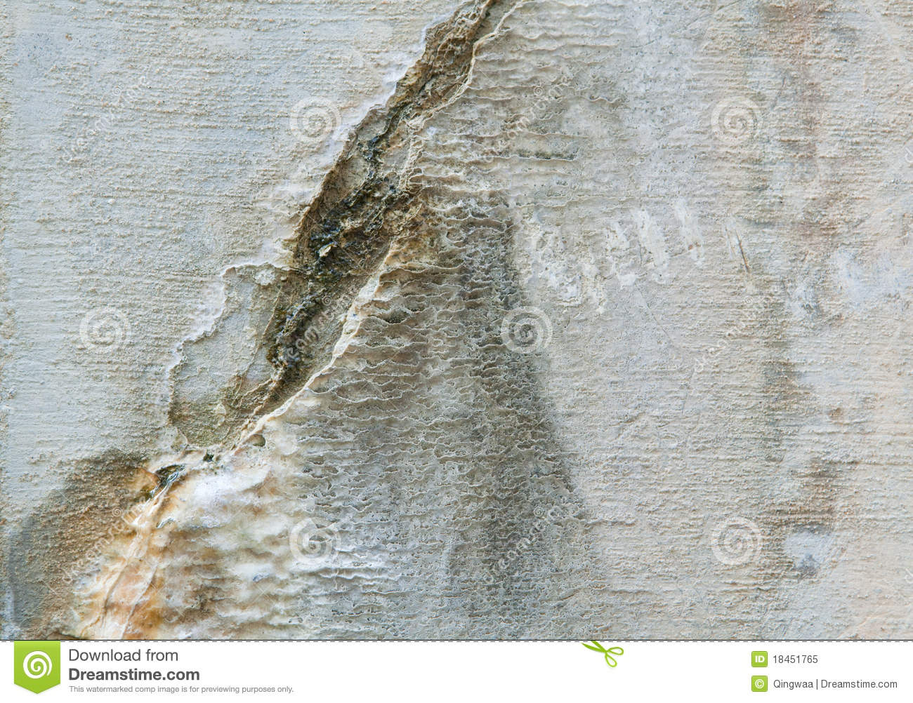Full frame weathered cracked cement wall minerals royalty for Mineral wall