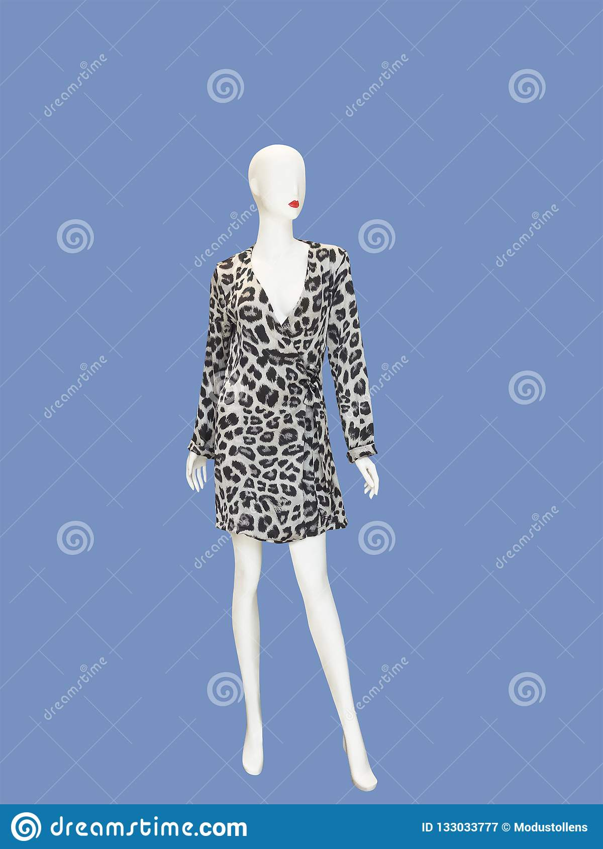 Full-length Female Mannequin Stock Image - Image of isolated